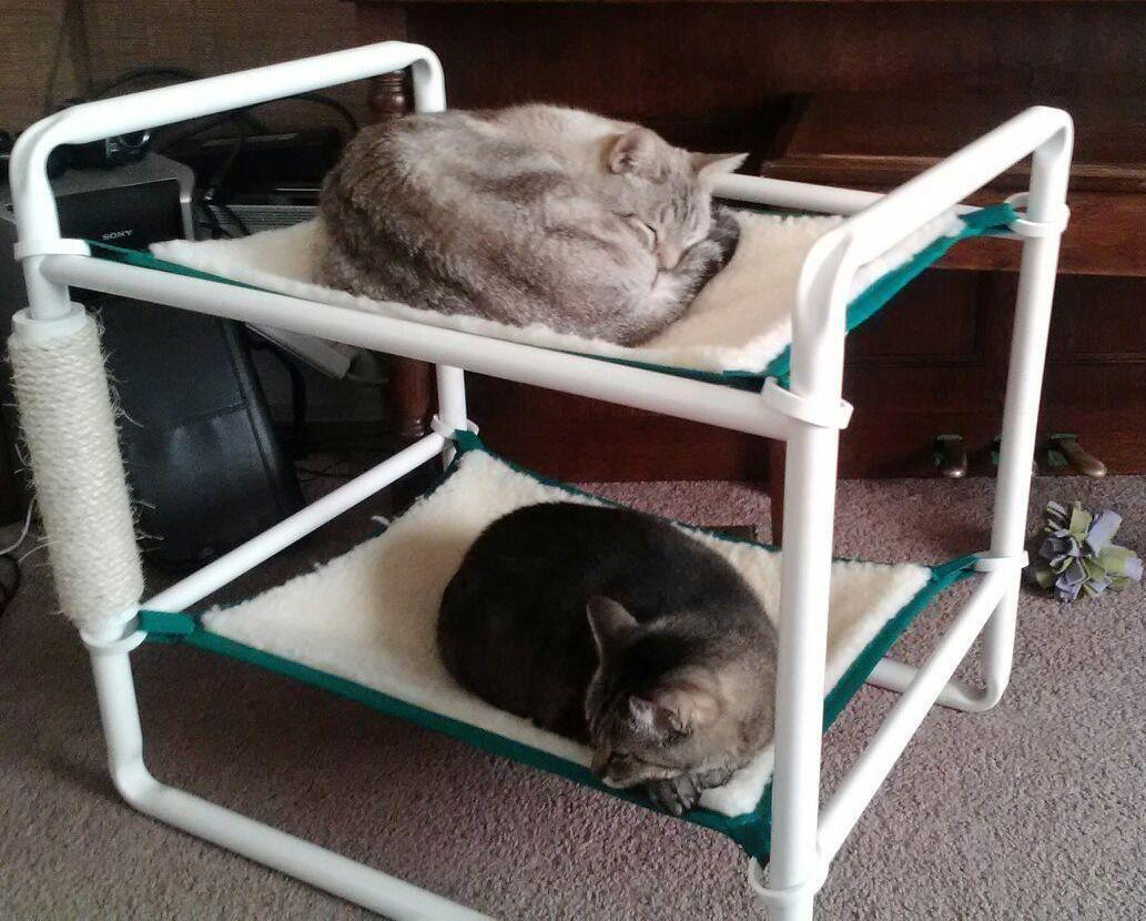 Diy Boys Cat Hammock Condos