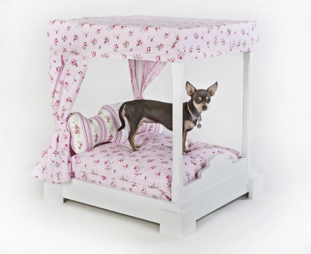 Diy Coffee Table Dog Bed Poster Old