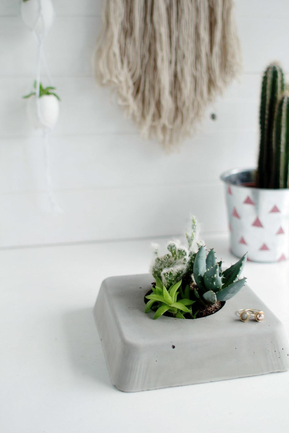 Diy Concrete Succulent Planter Household Appliance
