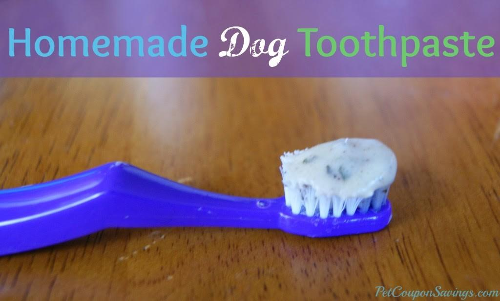 Diy Crafts Homemade Dog Toothpaste Easy