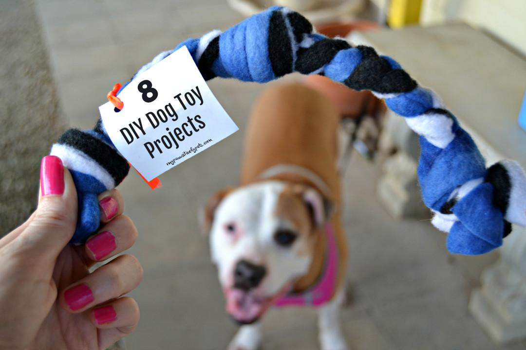 Diy Dog Toy Projects Keep Your Busy Summer