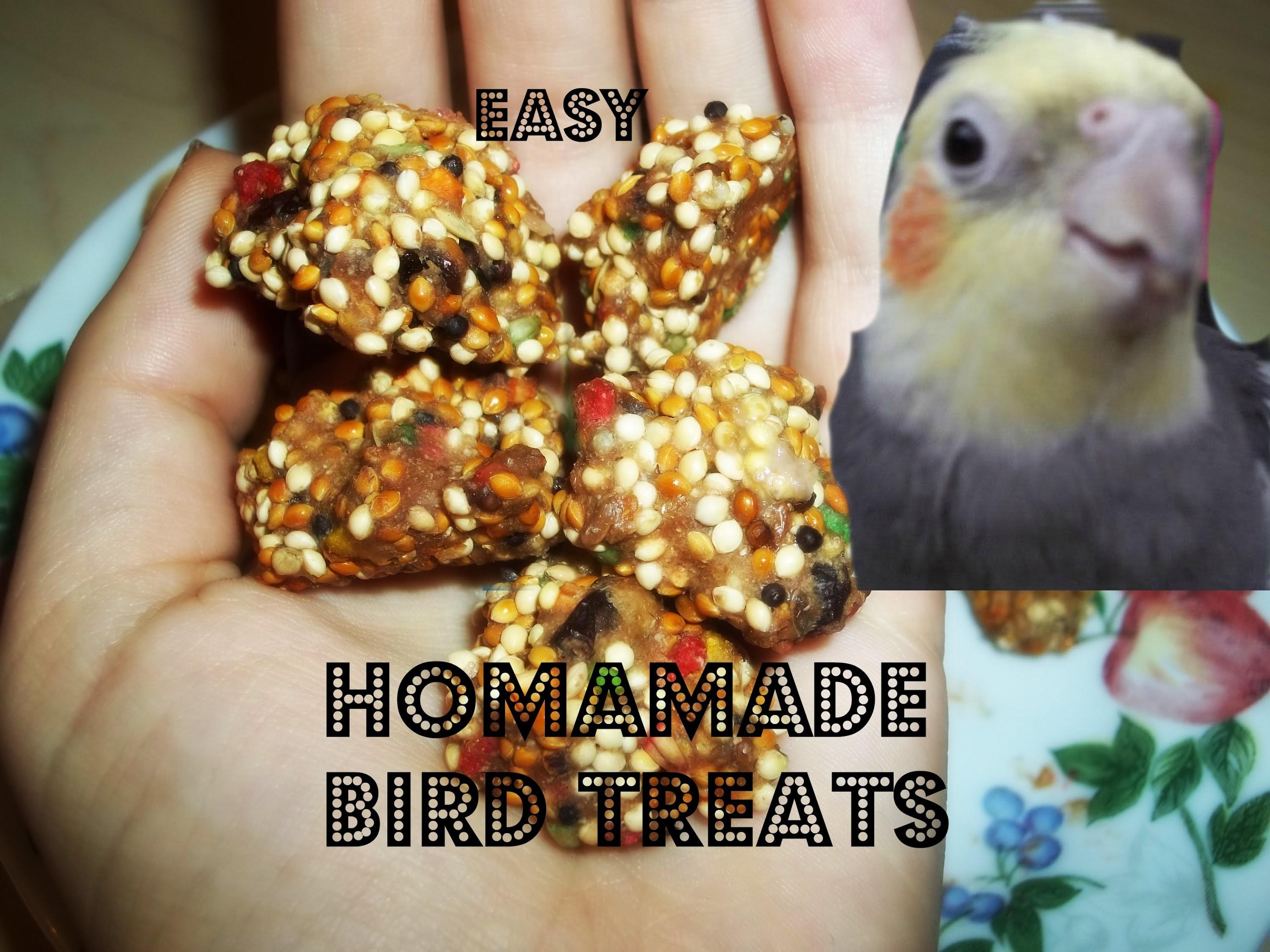 Diy Easy Bird Treats