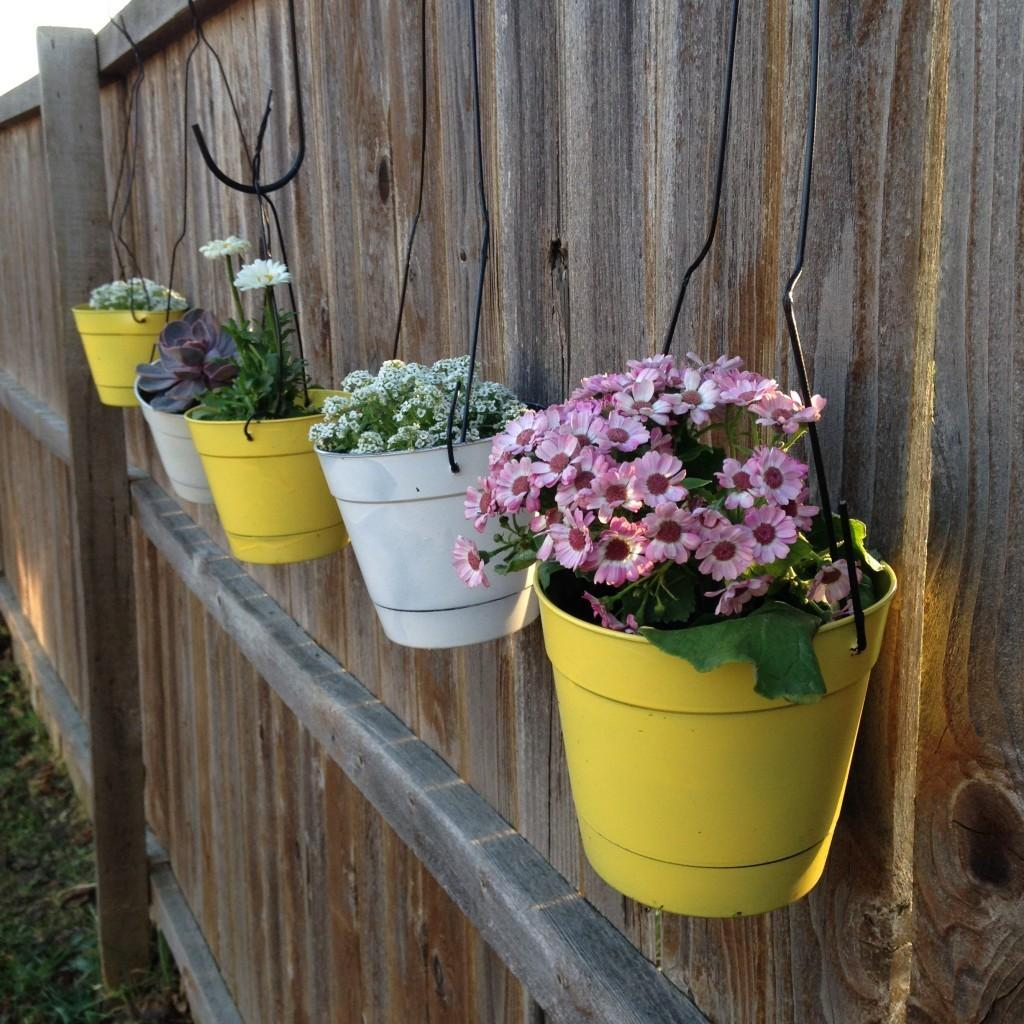 Diy Flower Hanging Baskets