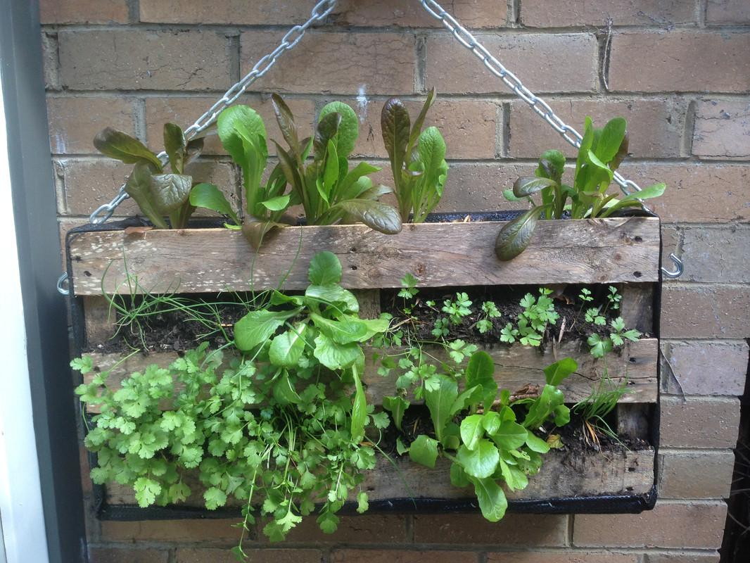 Diy Garden Ideas Using Old Pallets Greenhouses