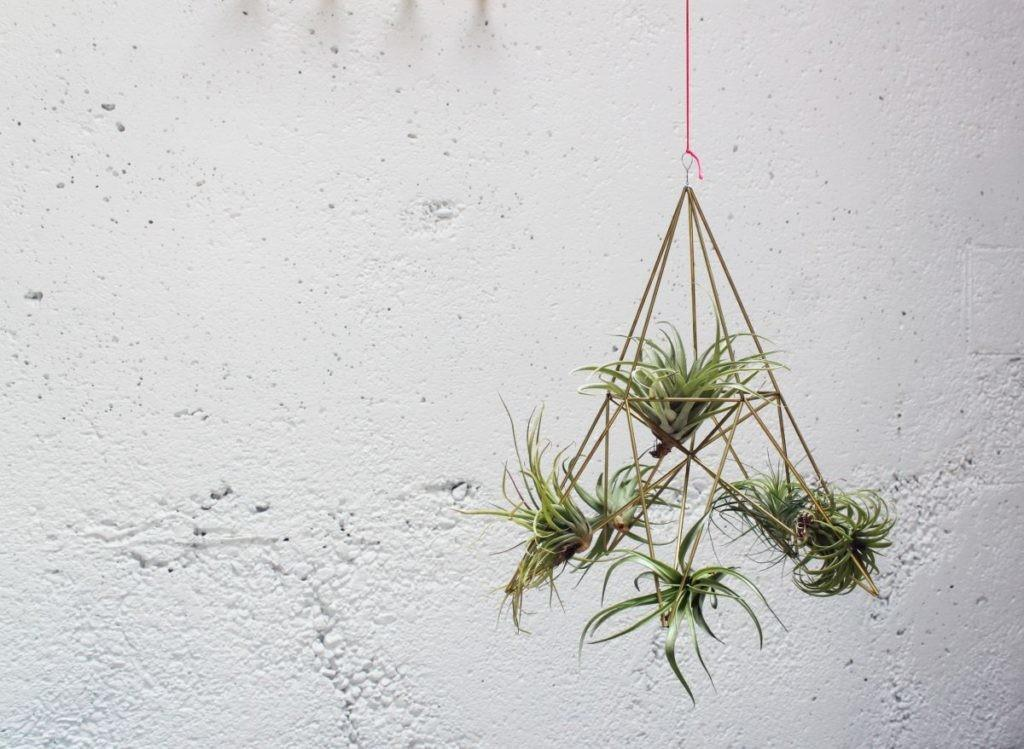 Diy Geometric Planters Hanging Home Decorating Trends