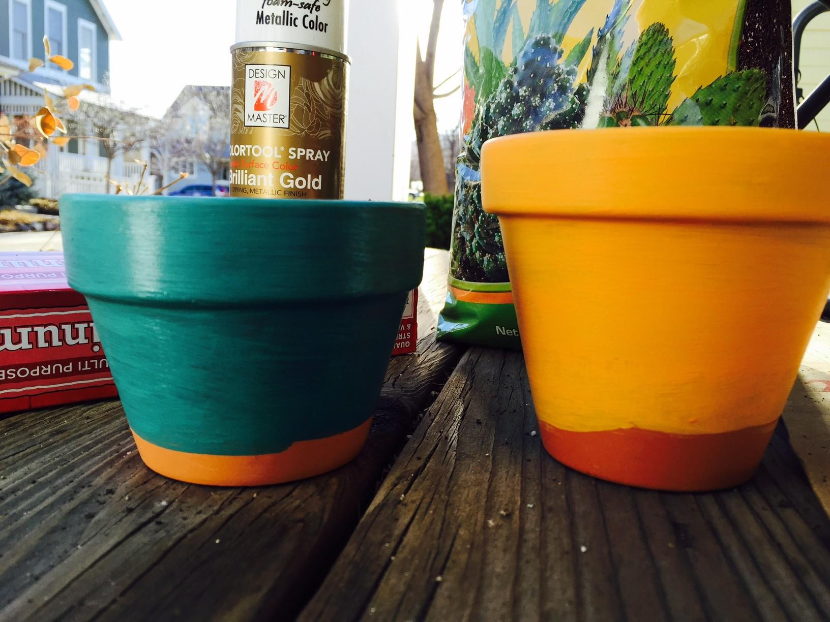 Diy Gold Dipped Succulents Mile High Baking