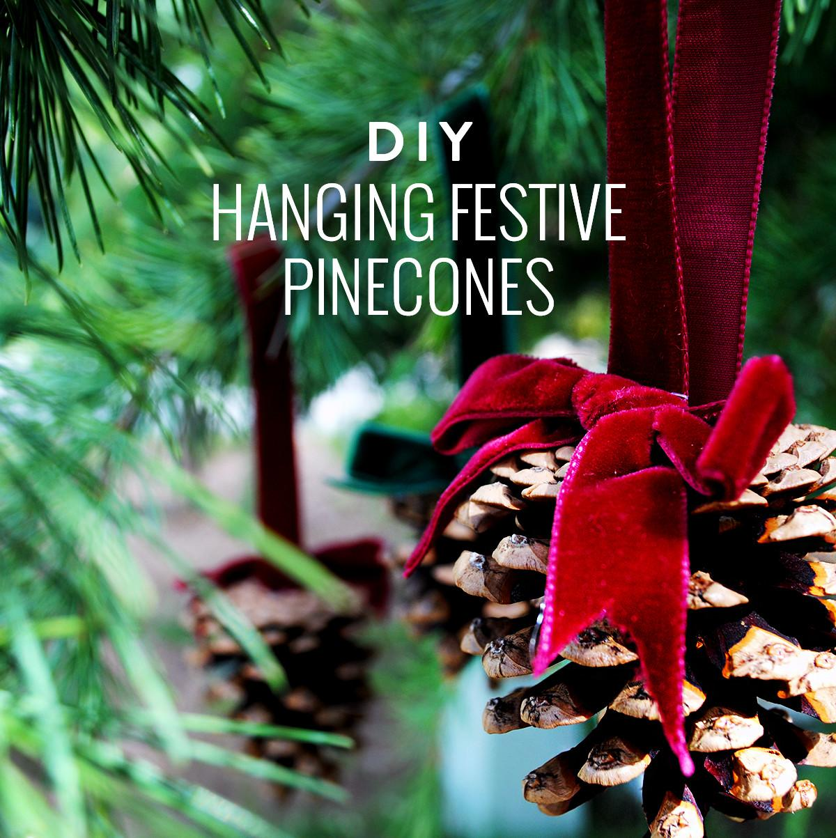 Diy Hanging Festive Pine Cones Makers Society