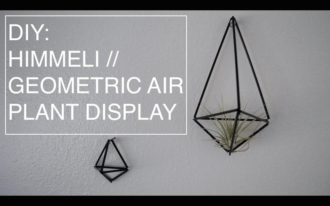 Diy Himmeli Geometric Air Plant Display