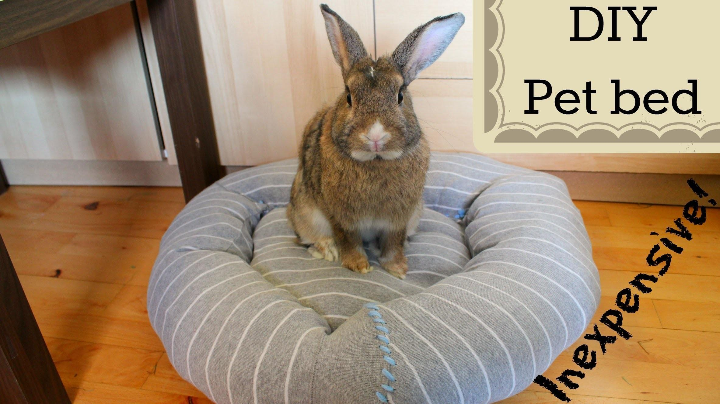 Diy Inexpensive Pet Bed