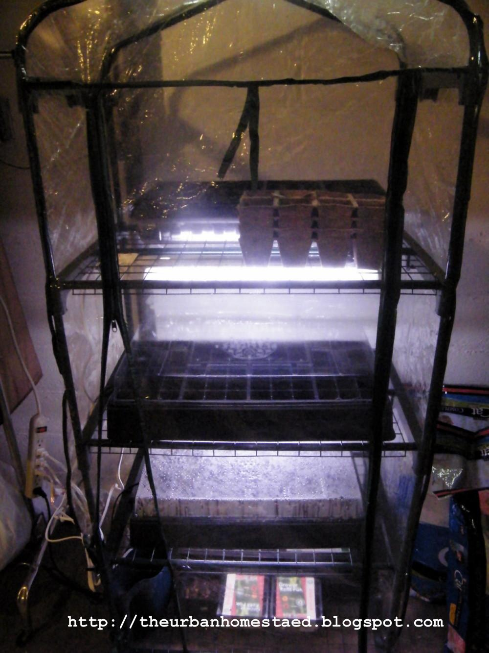 Diy Inexpensive Seed Starting Setup Indoor Greenhouse
