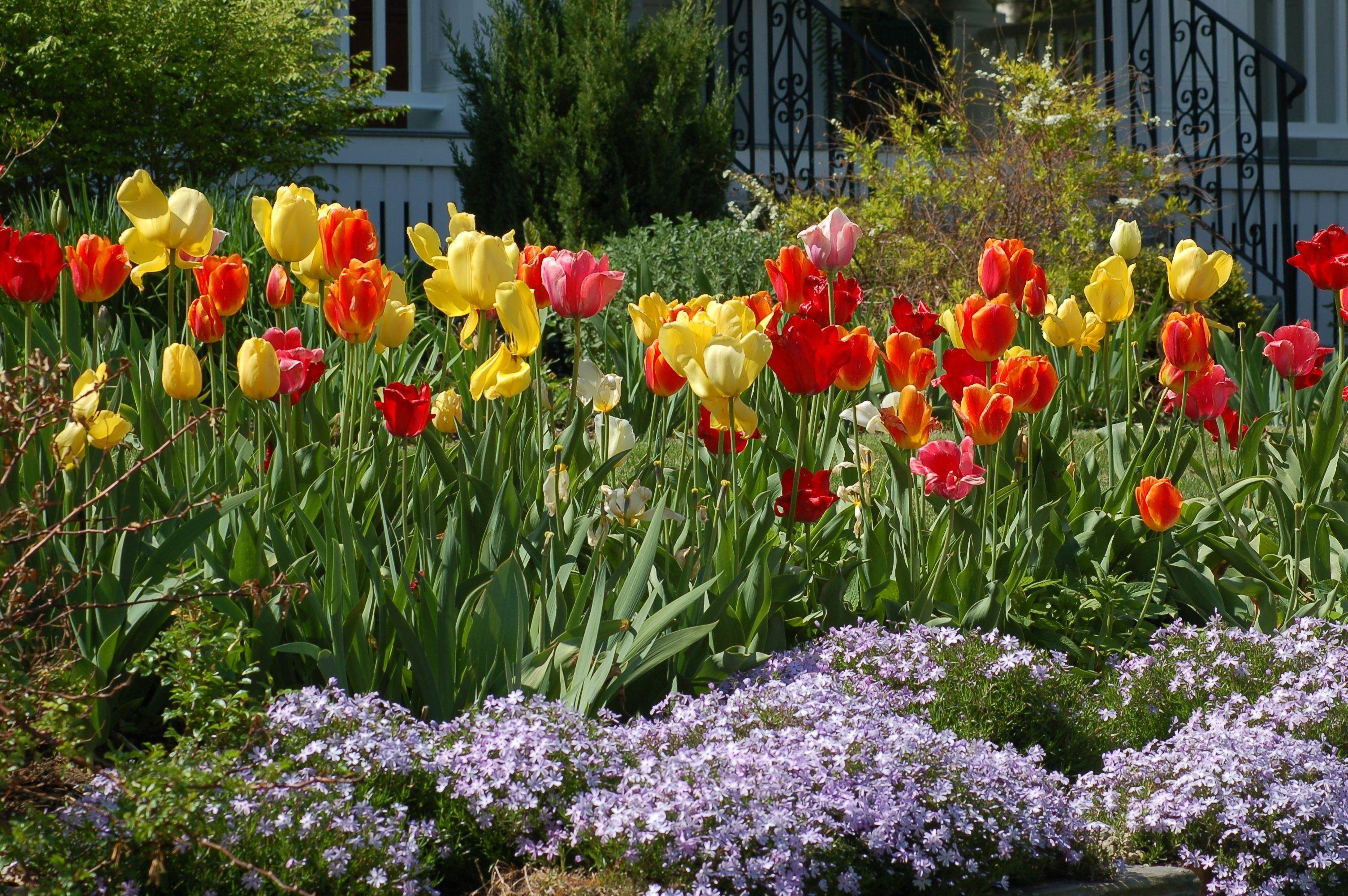 Diy Landscaping Ideas Cool Projects