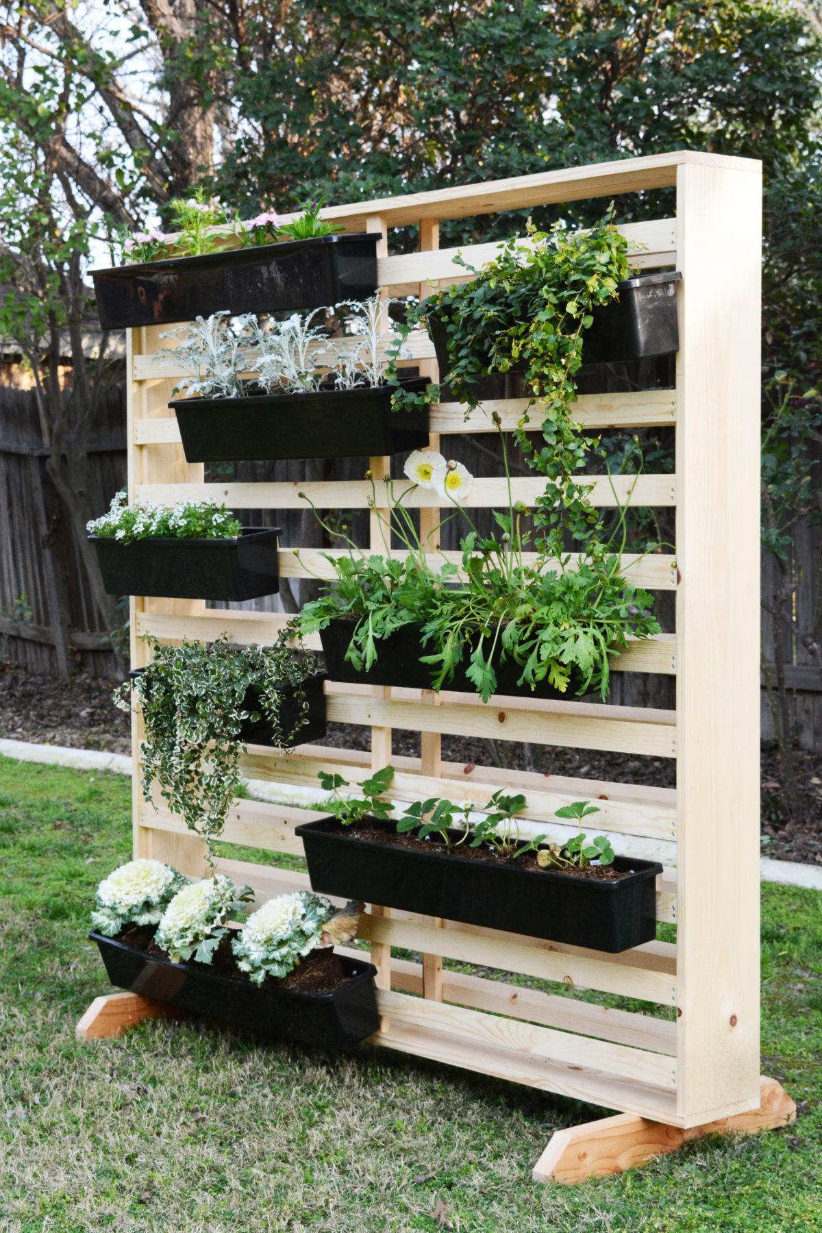 Diy Living Wall Moveable Planters Oleander Palm