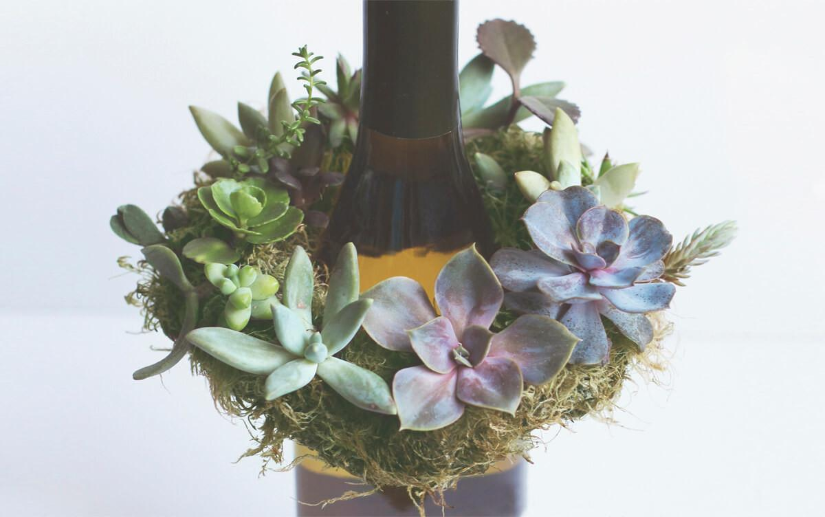 Diy Mini Live Succulent Wreath