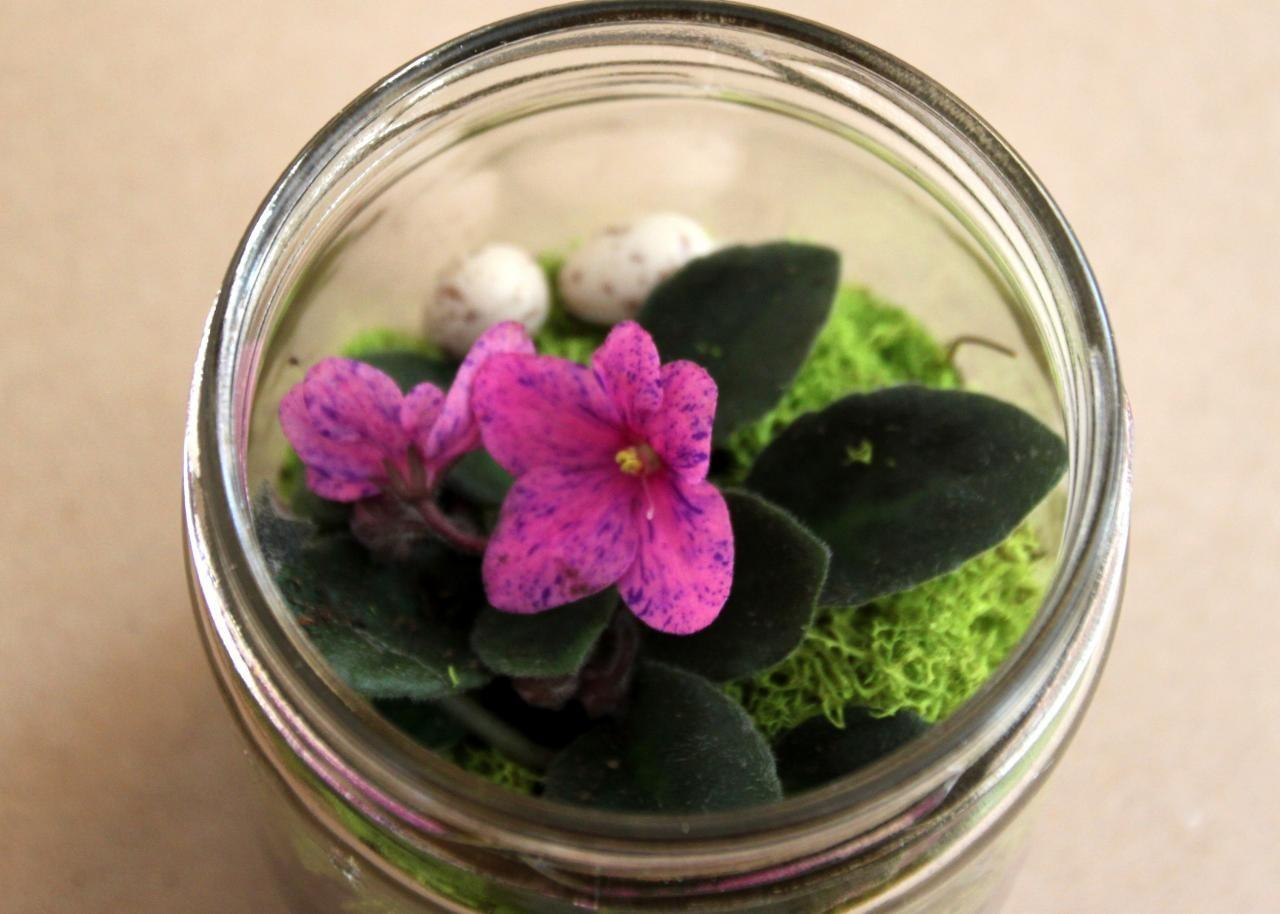 Diy Miniature Terrariums Made Upcycled Things