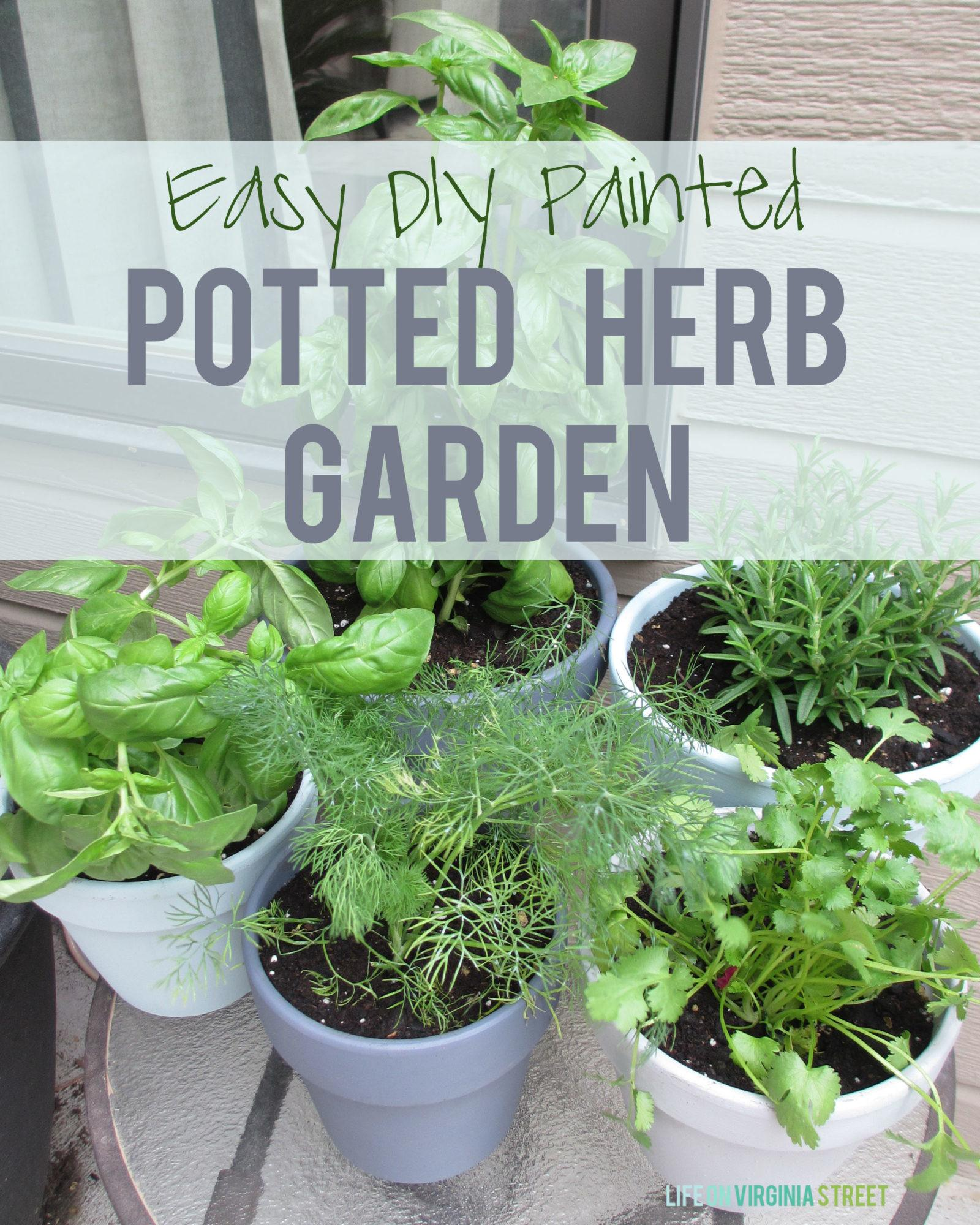 Diy Painted Potted Herb Garden Life Virginia Street