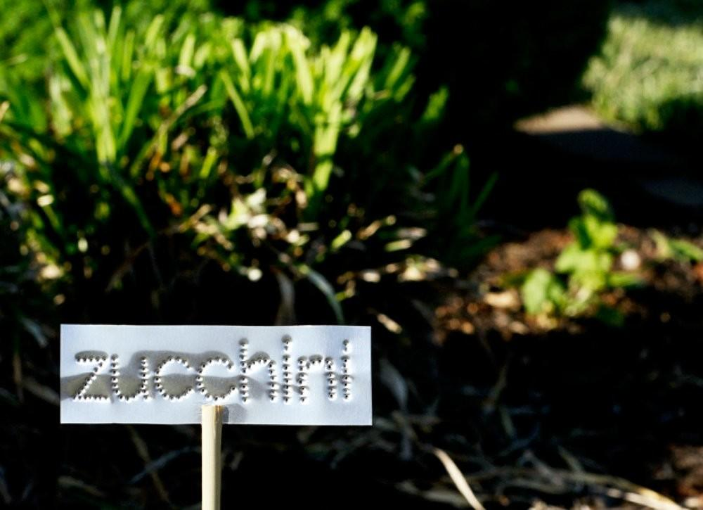 Diy Plant Markers Outdoor Projects Super Easy