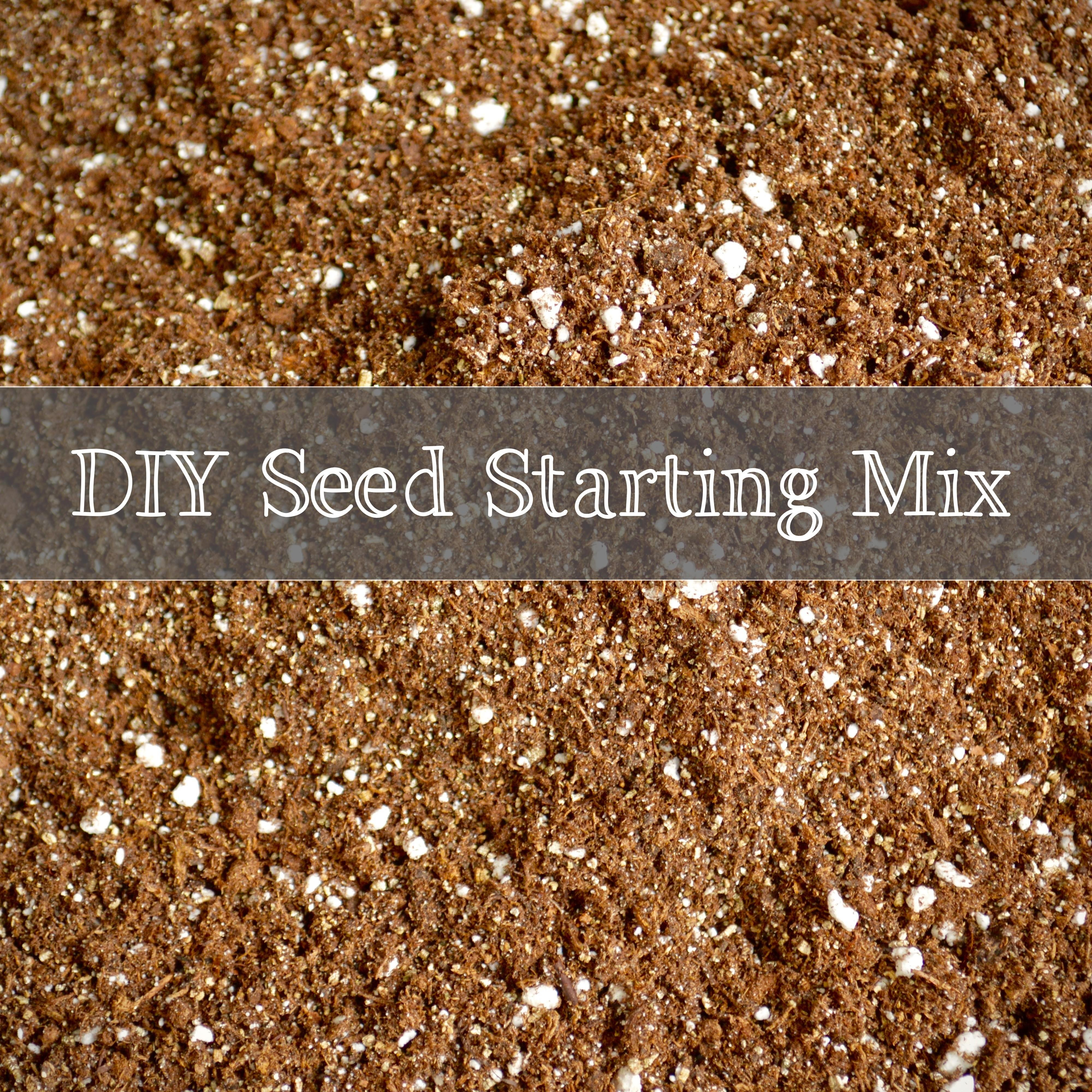 Diy Seed Starting Mix Trunnel Brook Farm