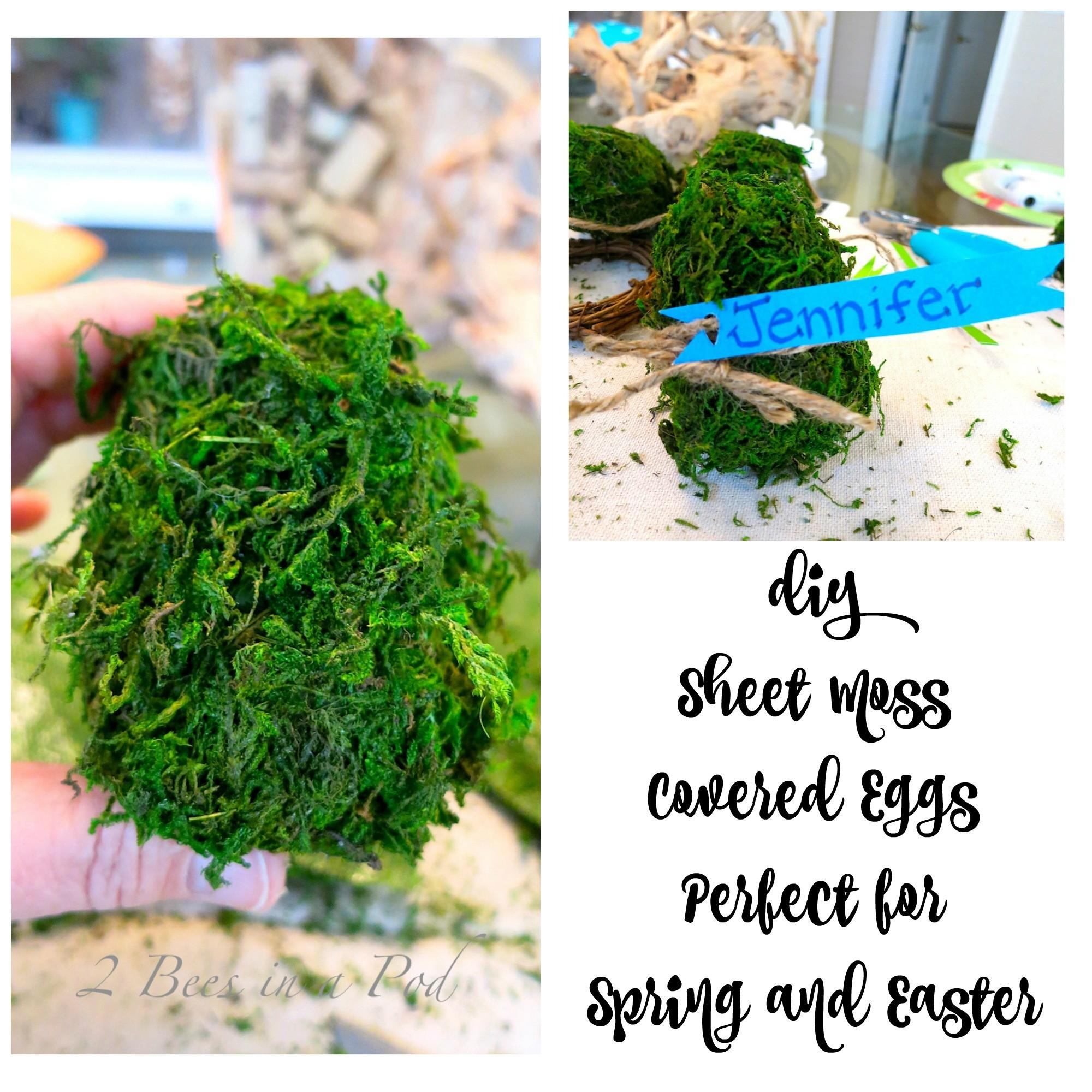 Diy Spring Moss Covered Eggs Place Cards Bees