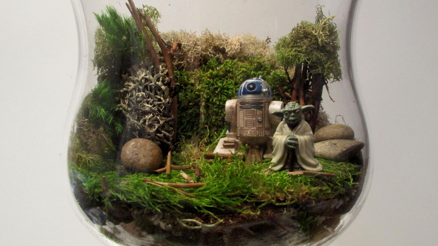 Diy Star Wars Terrarium Thanksgiving Centerpiece