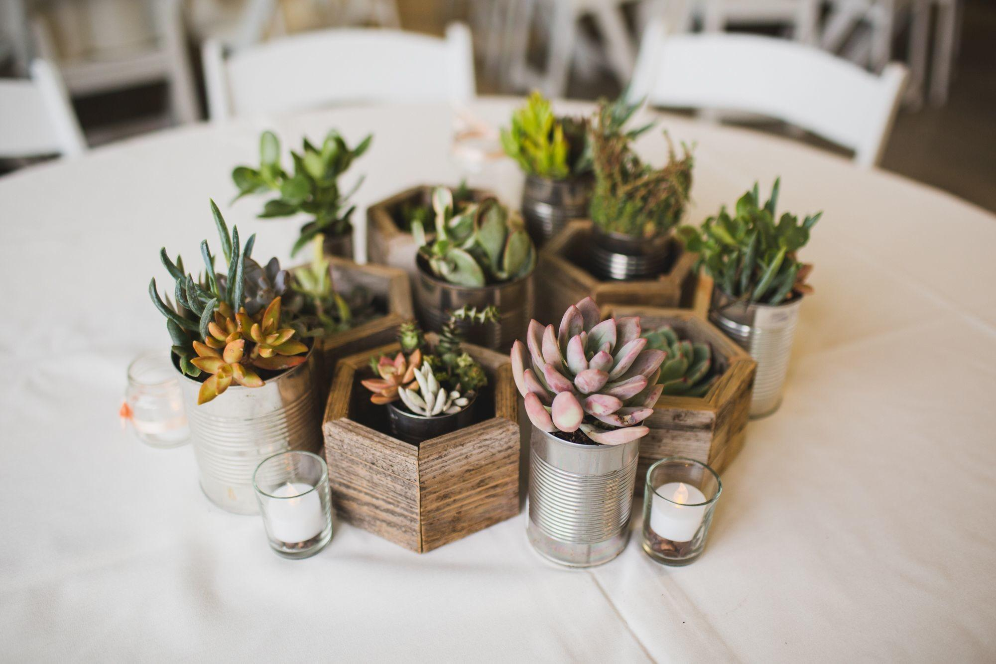 Diy Succulent Centerpieces Recycled Planters