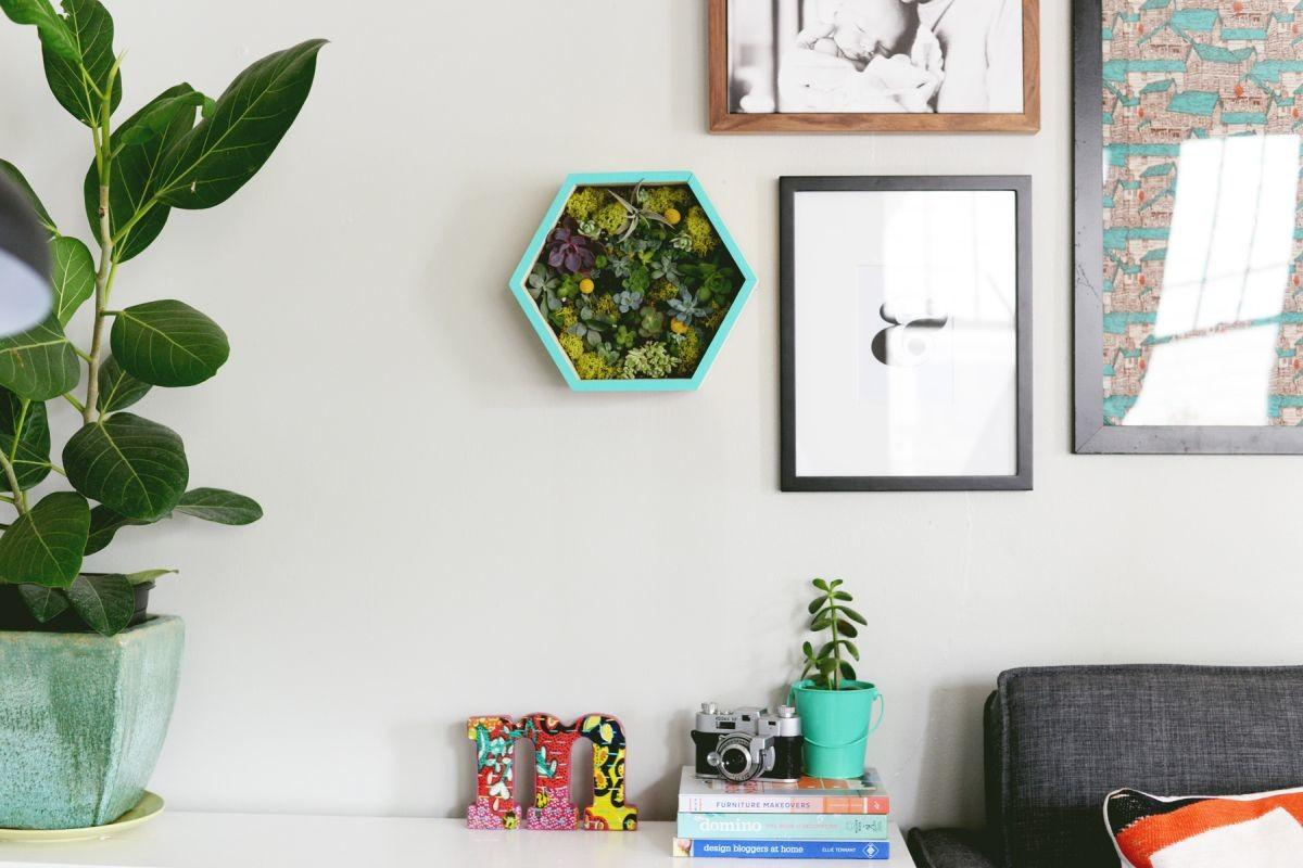 Diy Succulent Wall Planter Decorate Home Decorating