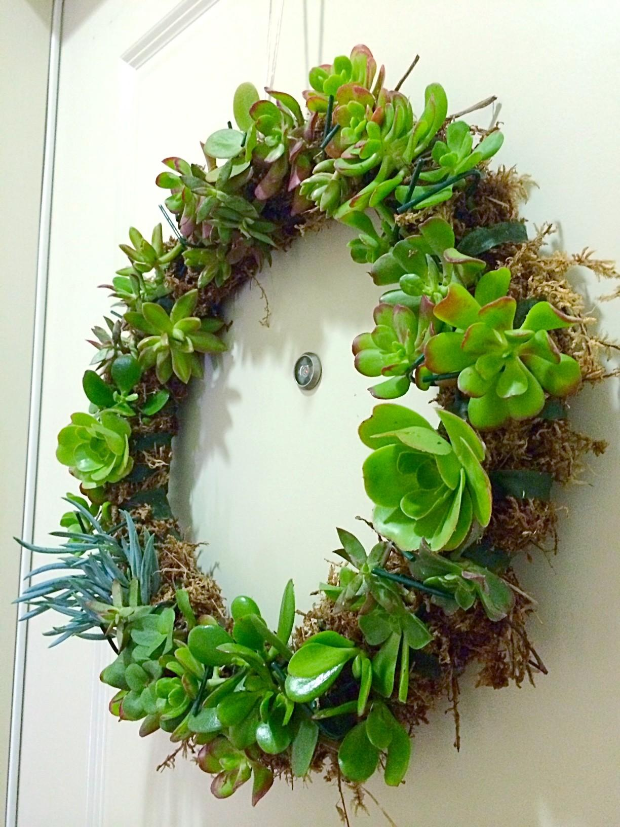 Diy Succulent Wreath Spoonful Pretty