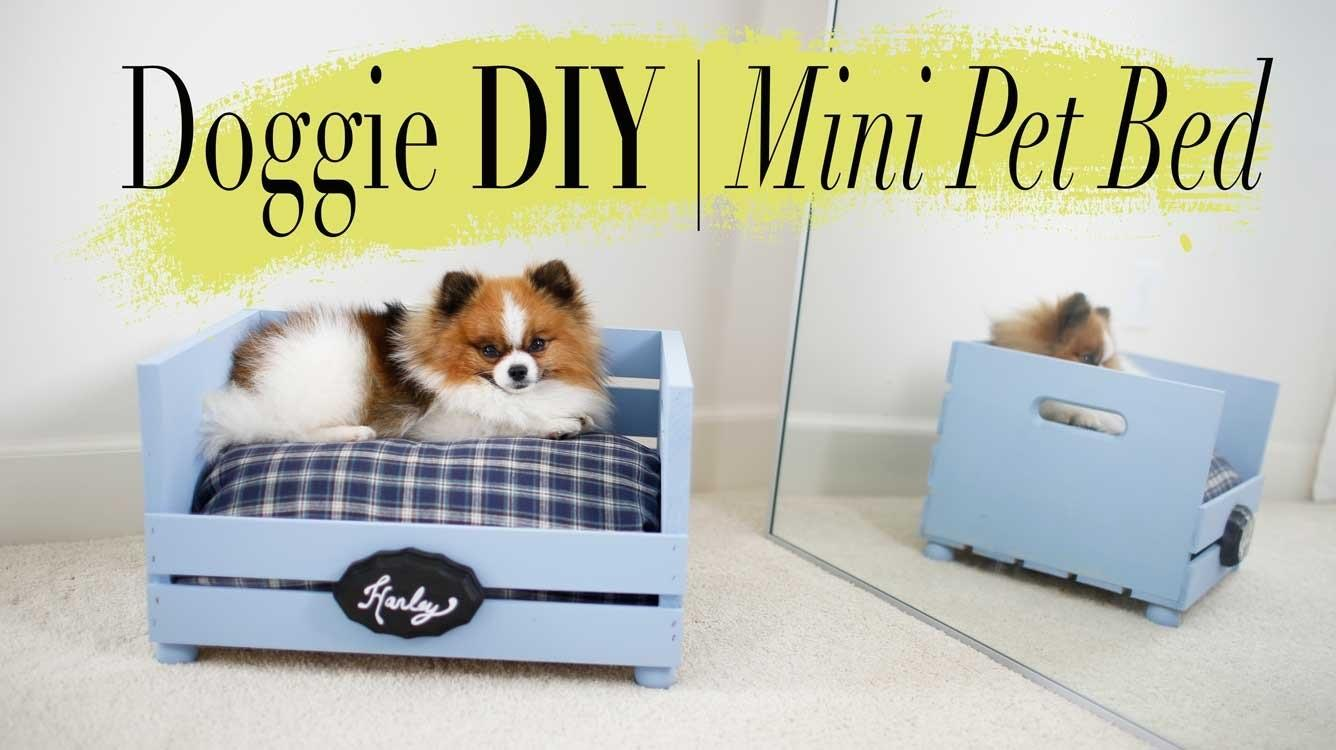 Diy Super Easy Mini Dog Cat Bed Ann