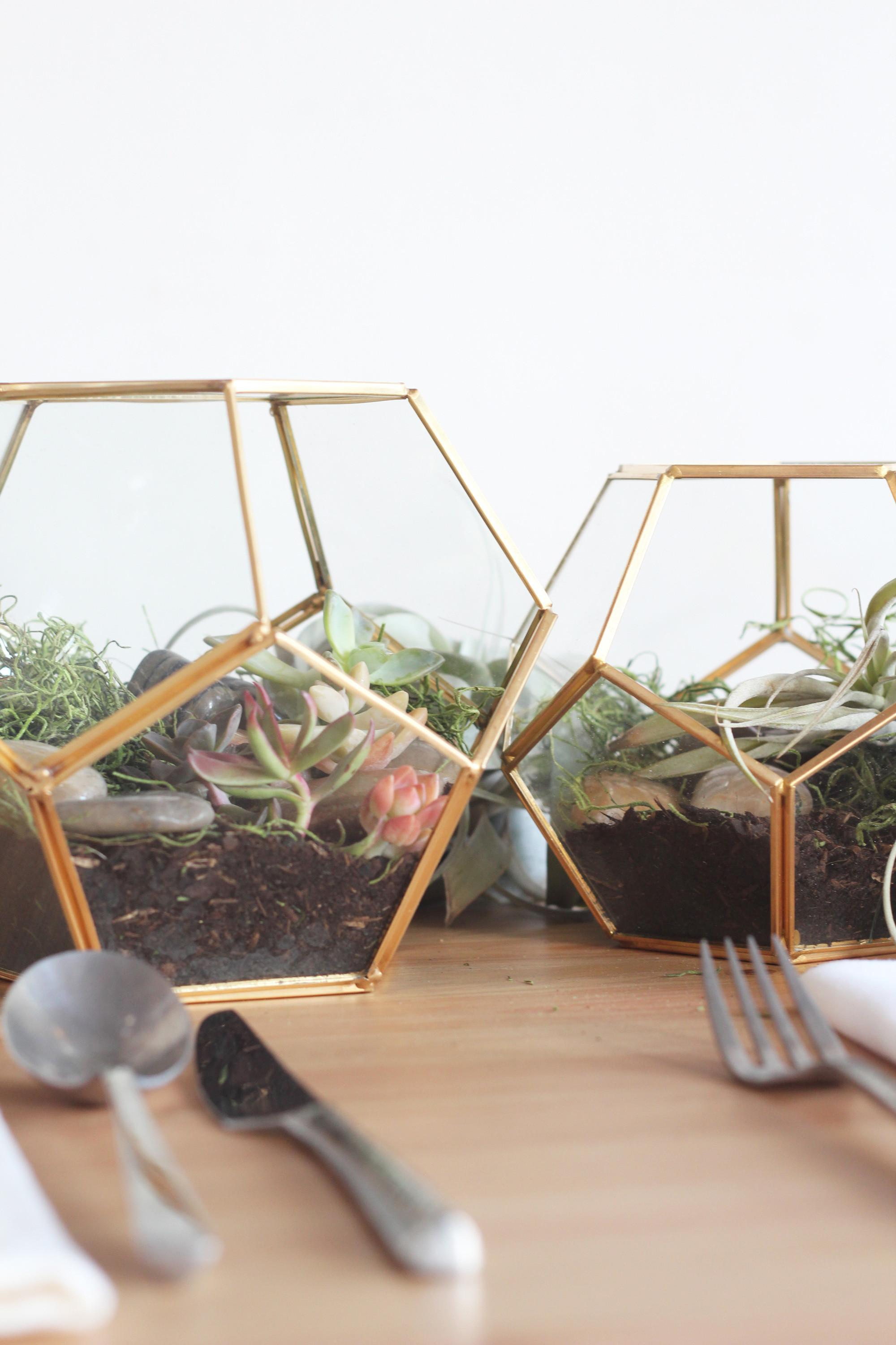 Diy Terrarium Centerpieces Easy Wedding Decor