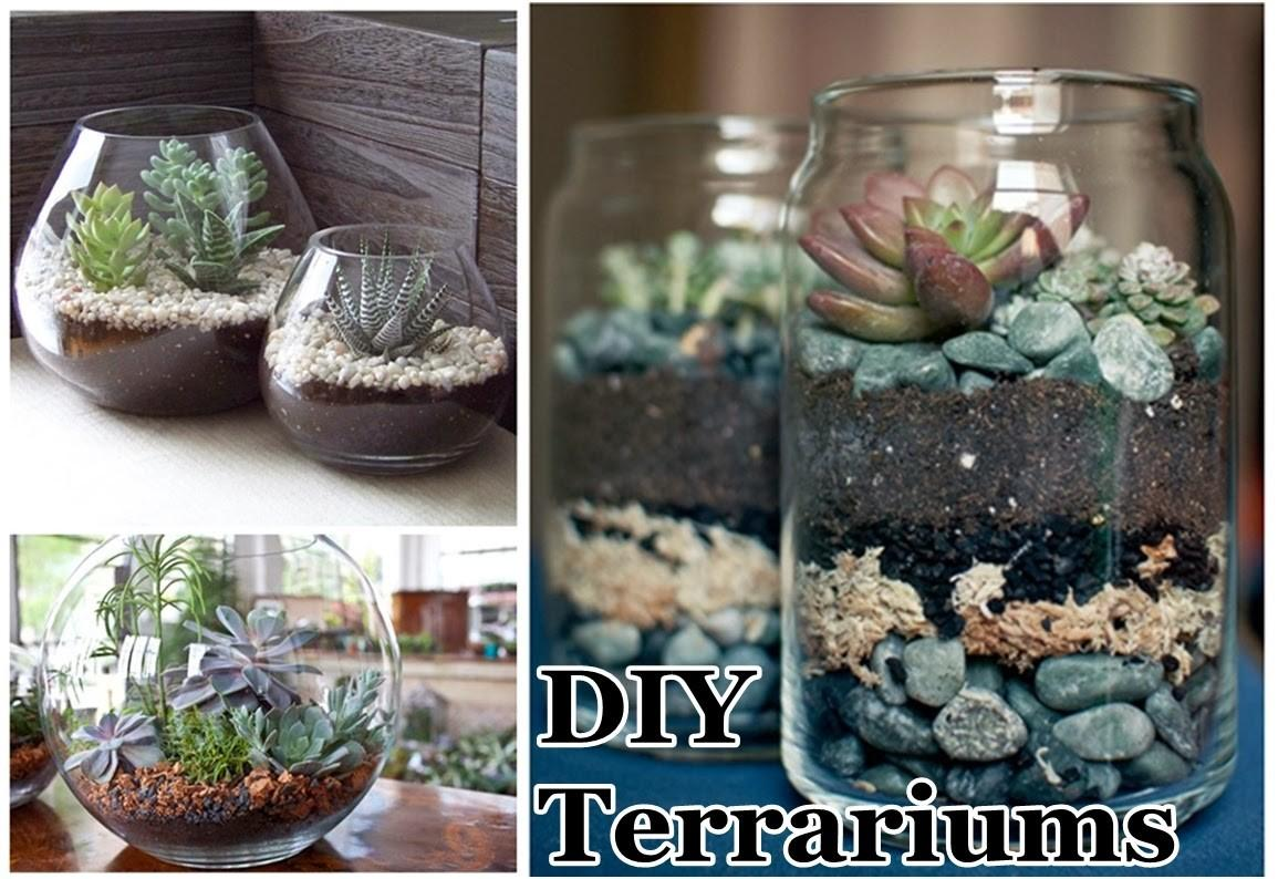 Diy Terrariums Craft Projects