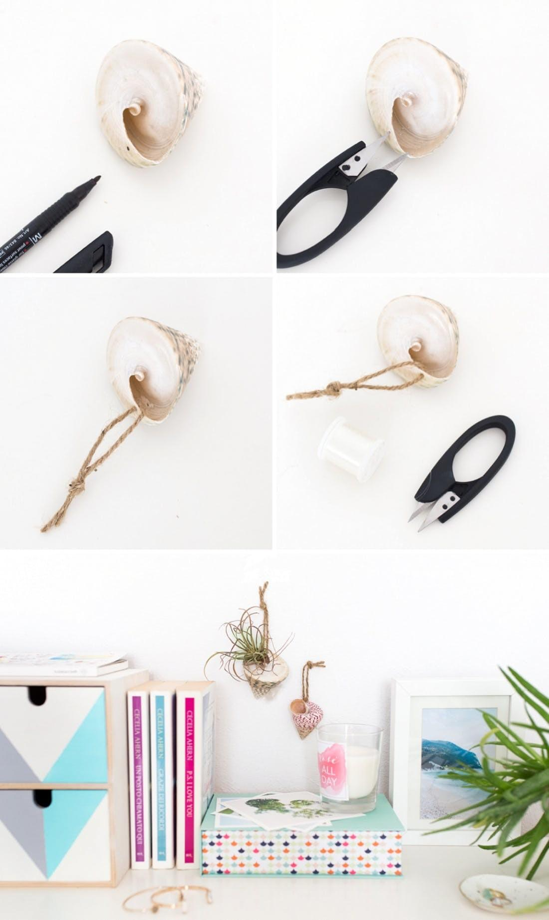 Diy These Modcloth Inspired Shell Hanging Planters