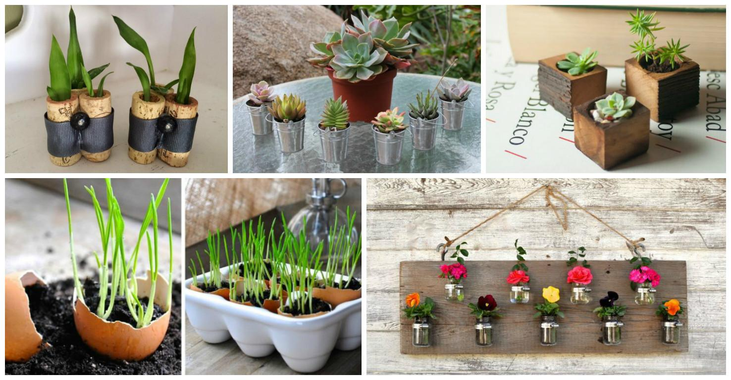 Diy Tiny Planters Provide Inspiration Sure