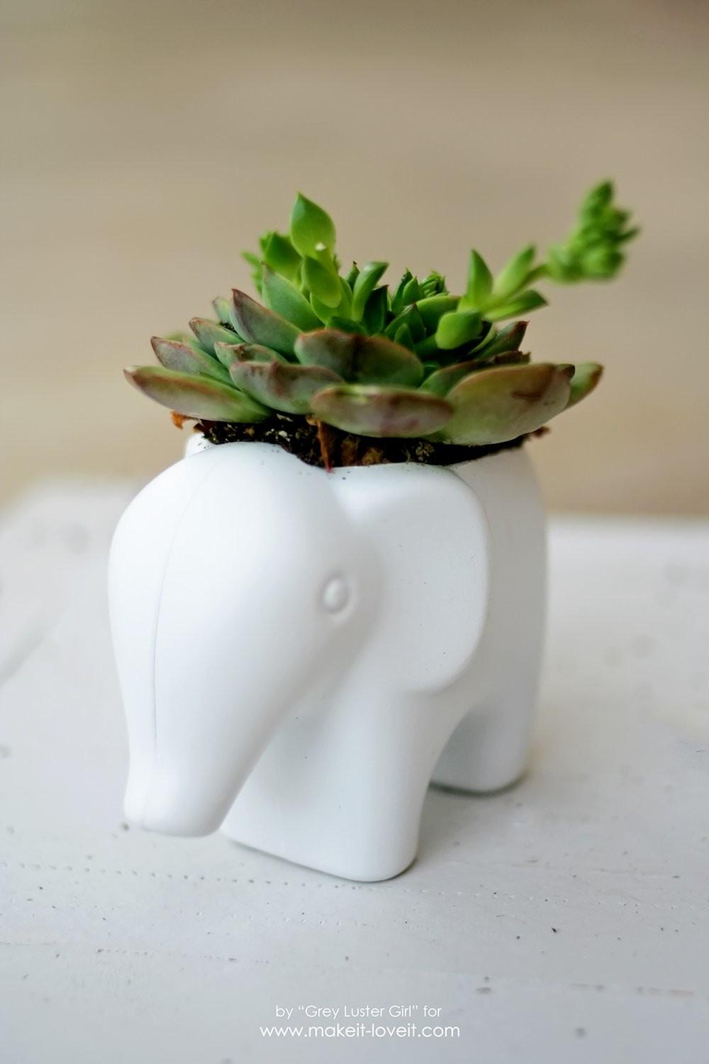 Diy Toy Elephant Succulent Planter Make Love