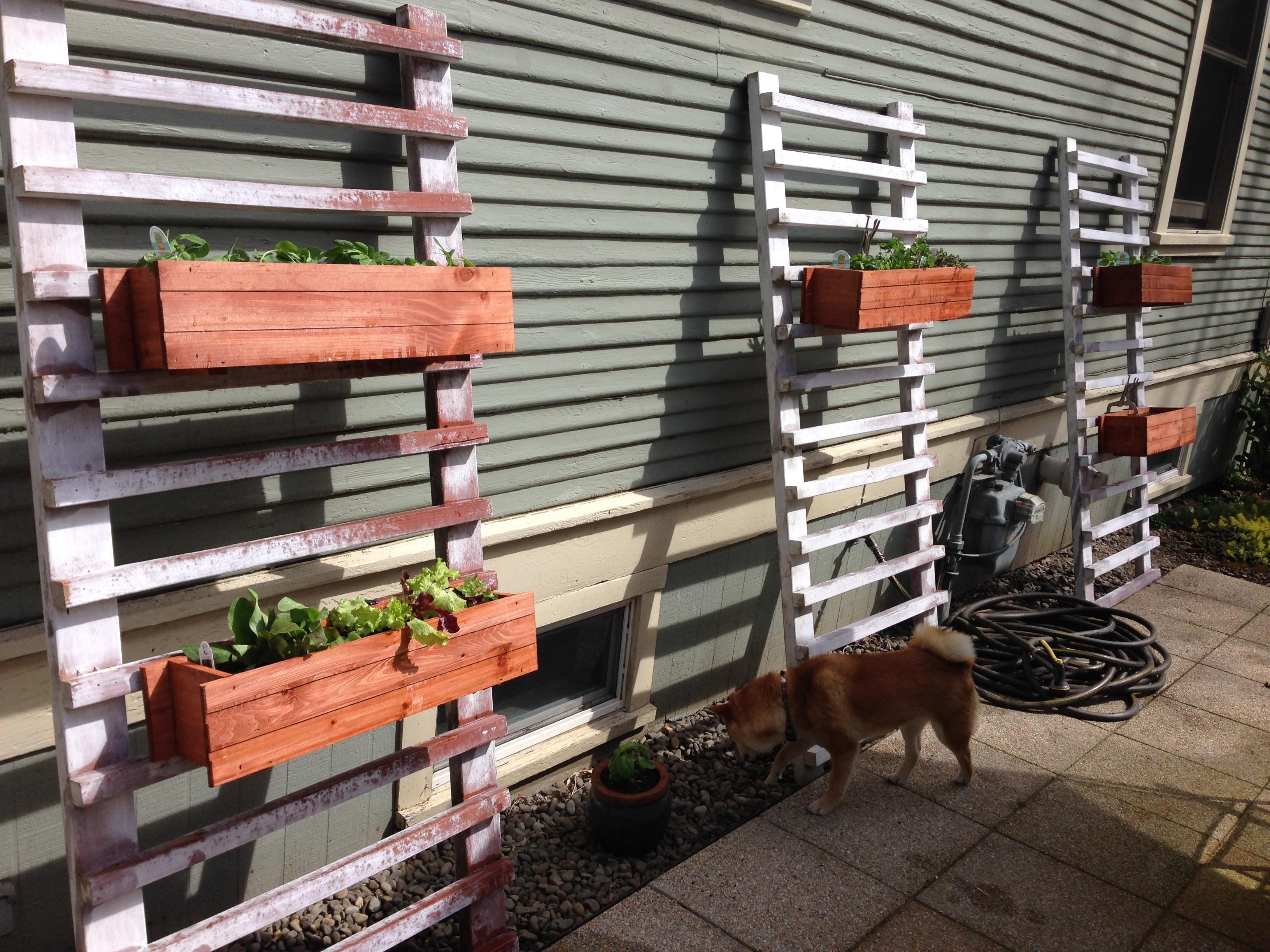 Diy Vertical Backyard Garden Planter Boxes Using Reclaimed