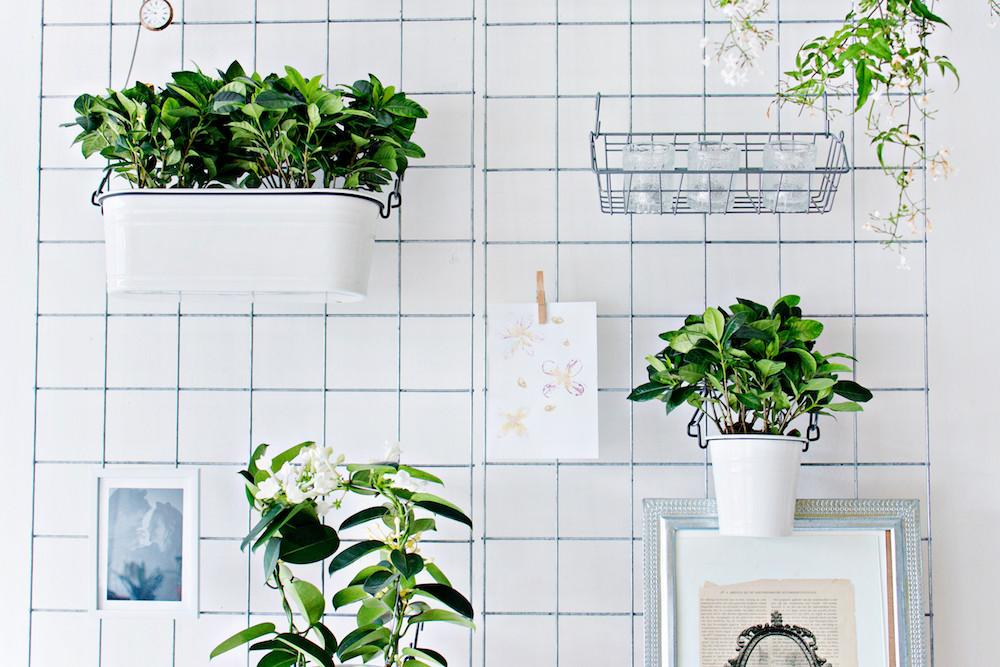 Diy Wall Planters Pixshark Galleries