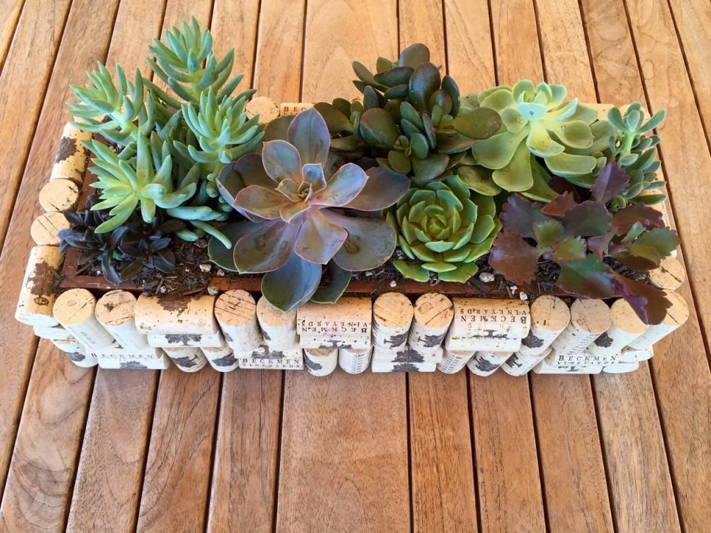 Diy Wine Cork Planters Should Miss