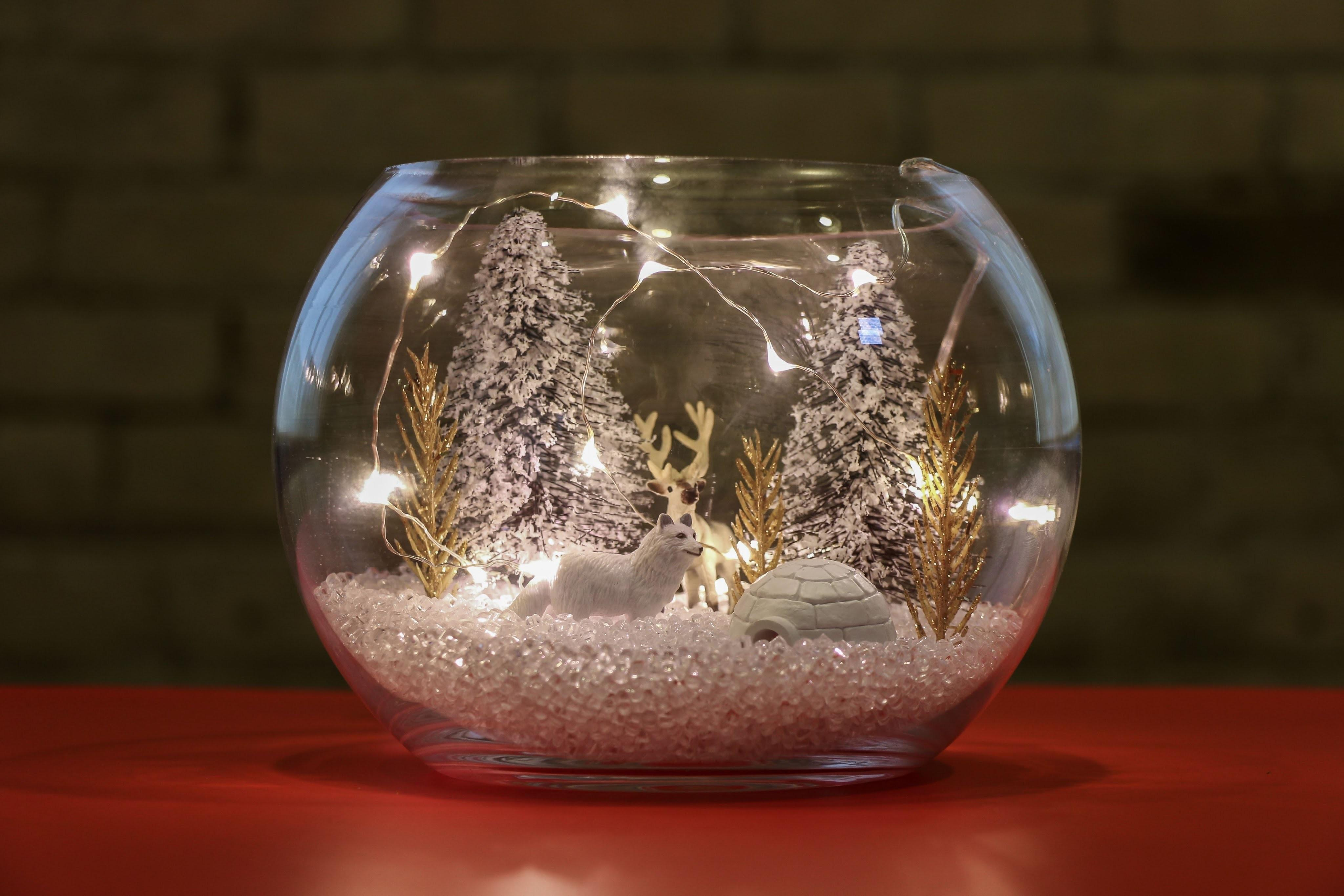 Diy Winter Terrarium