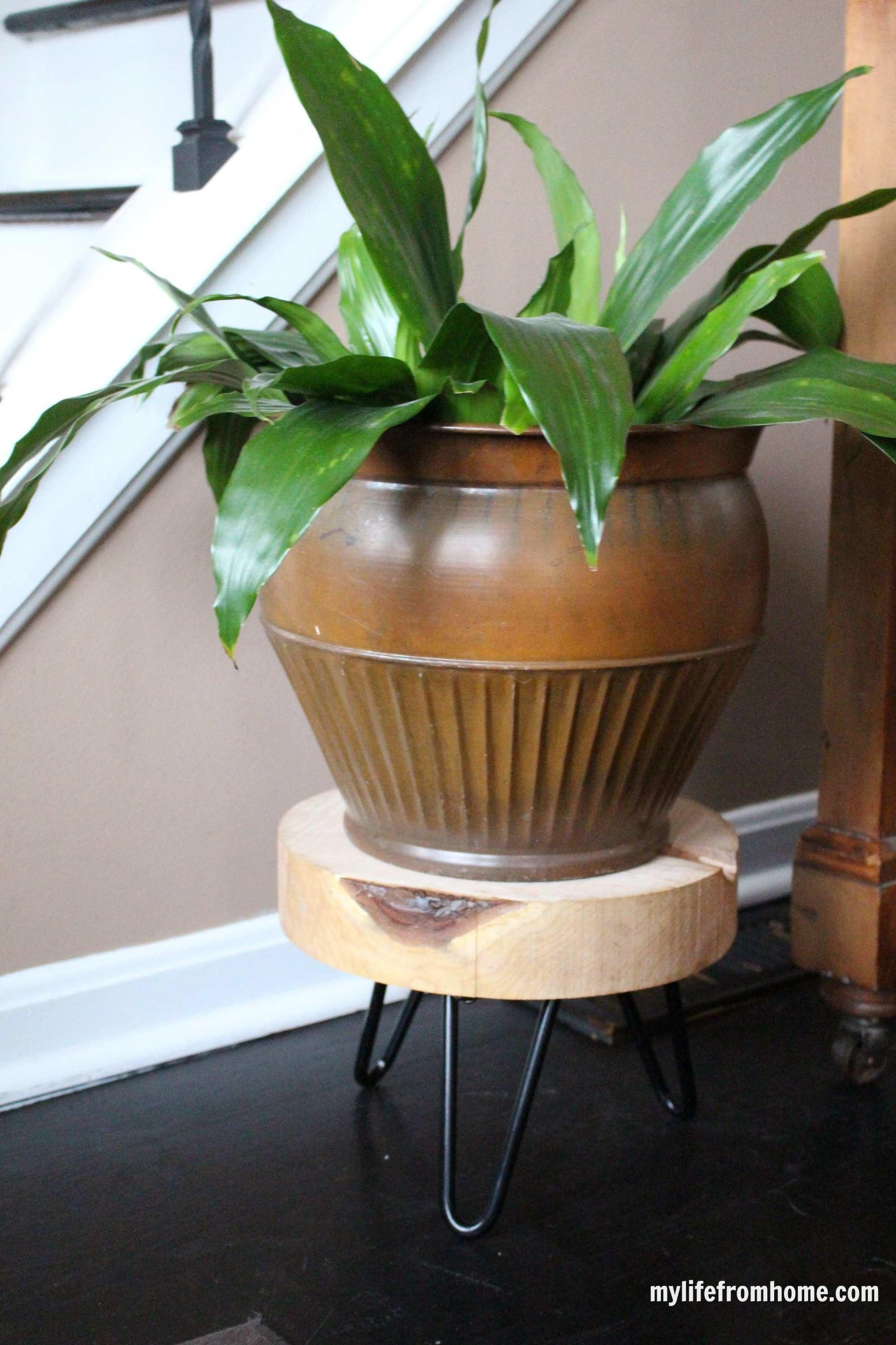 Diy Wood Plant Stand Make Your Space Beautiful
