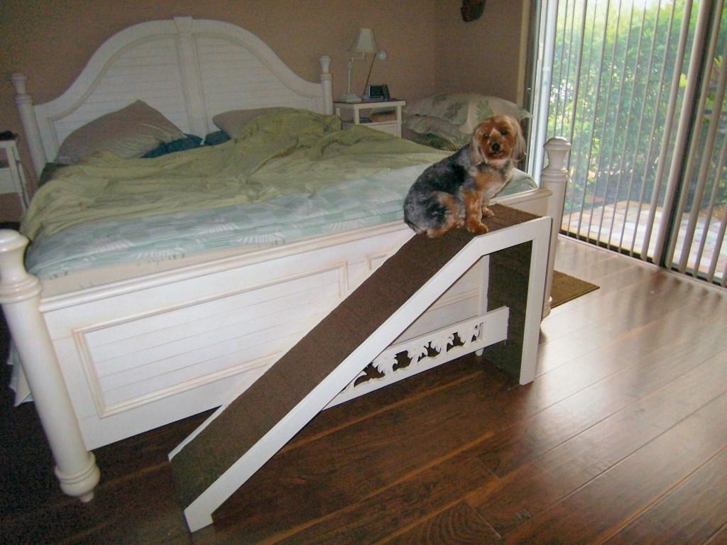 Dog Ramp Stairs Small Build