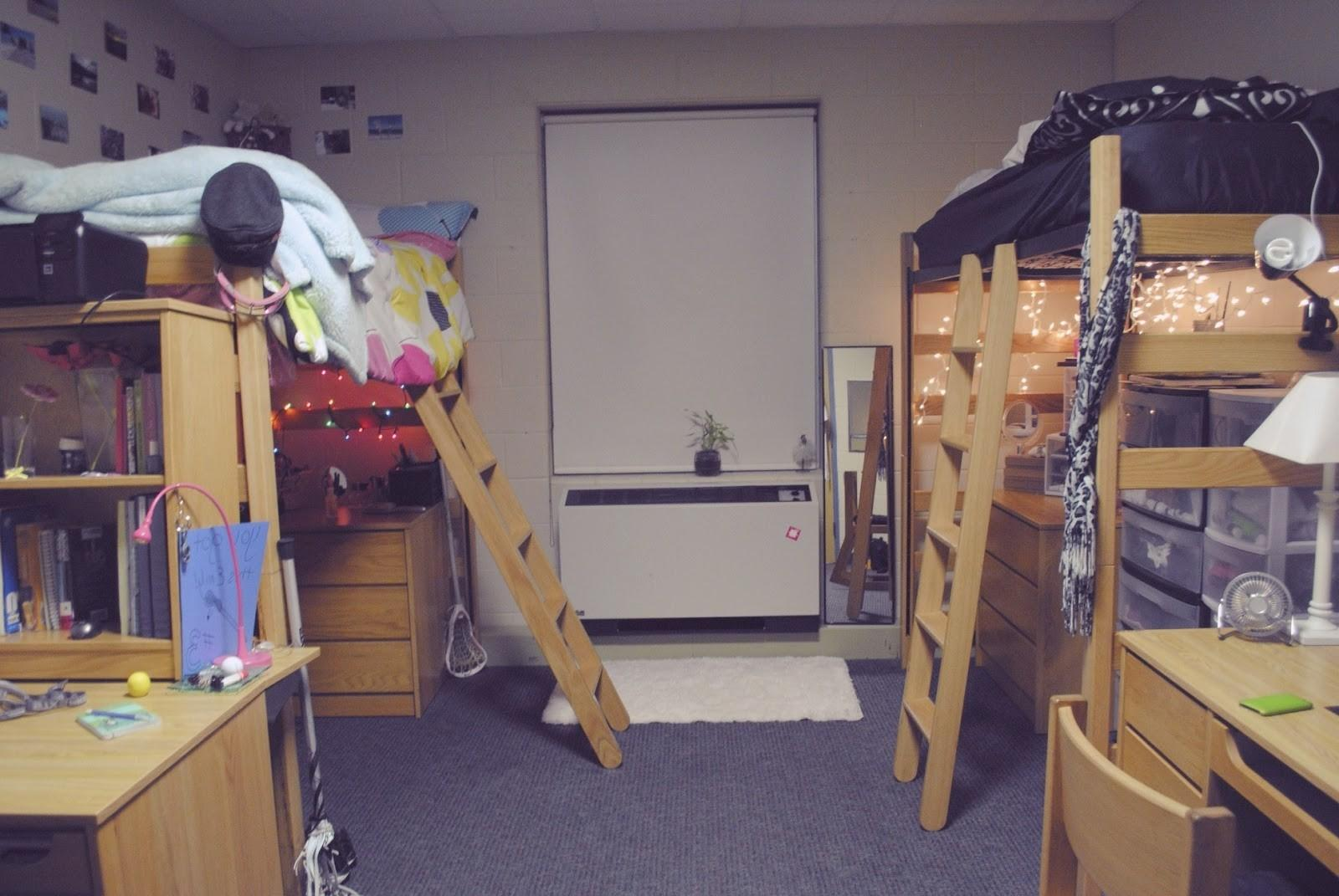 Dorm Room Loft Bed Ideas Home Design