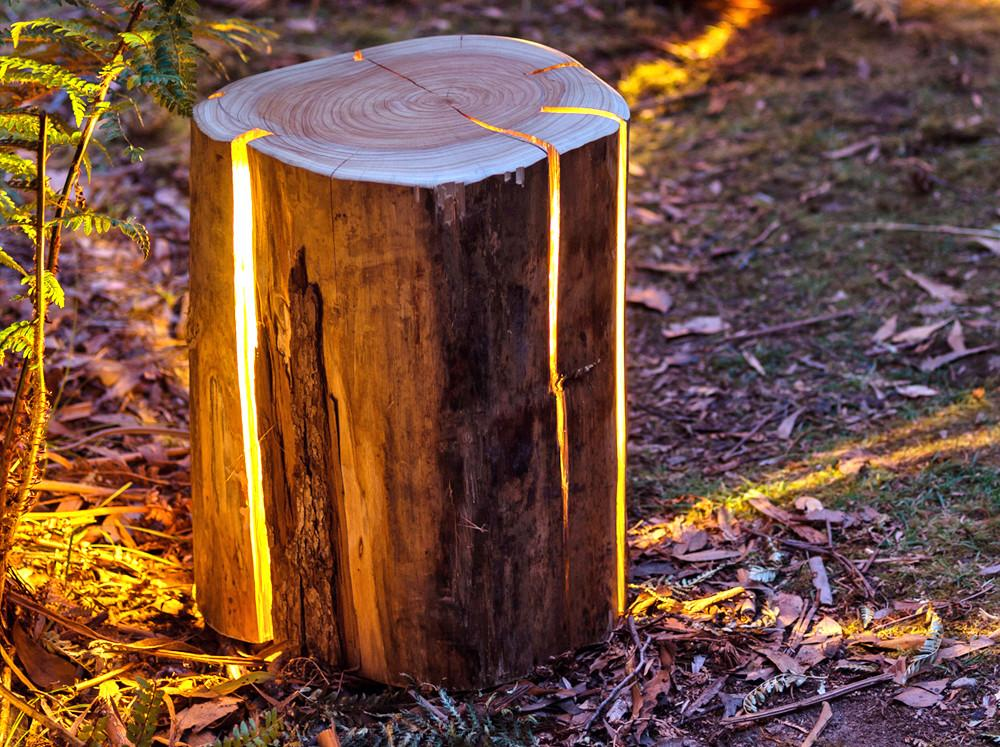 Duncan Meerding Transforms Tree Stumps Into Lamps