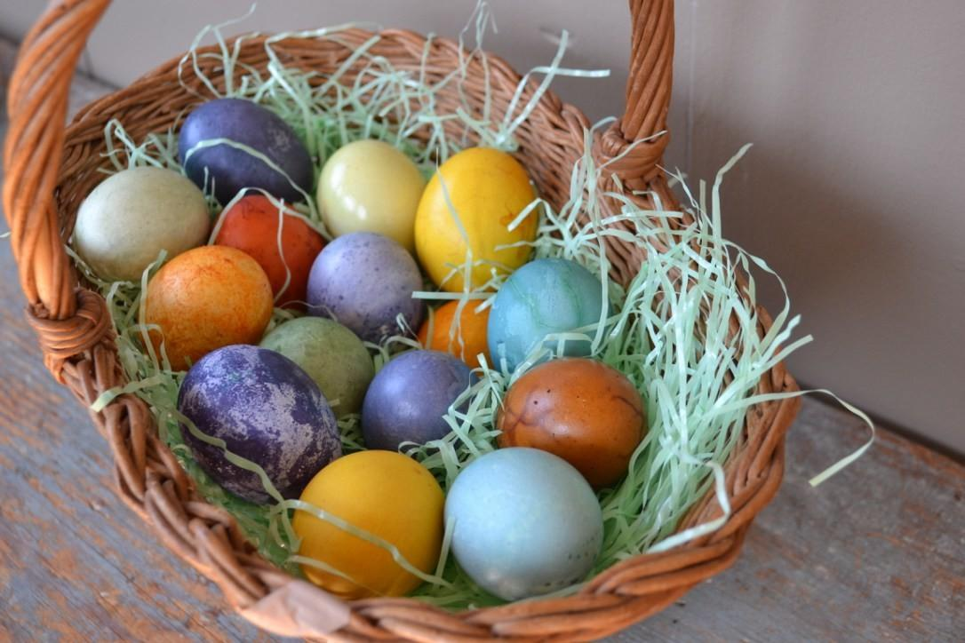 Dye Easter Eggs Naturally Herbal Academy