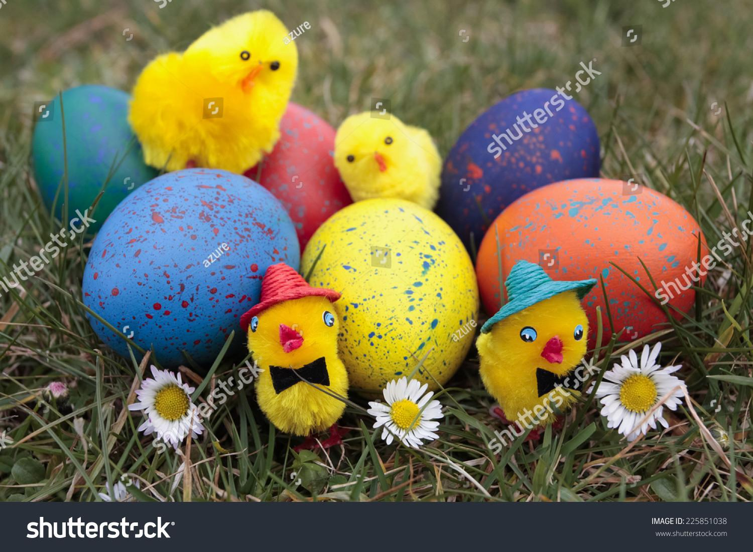 Easter Chicks Decorations Eggs Stock