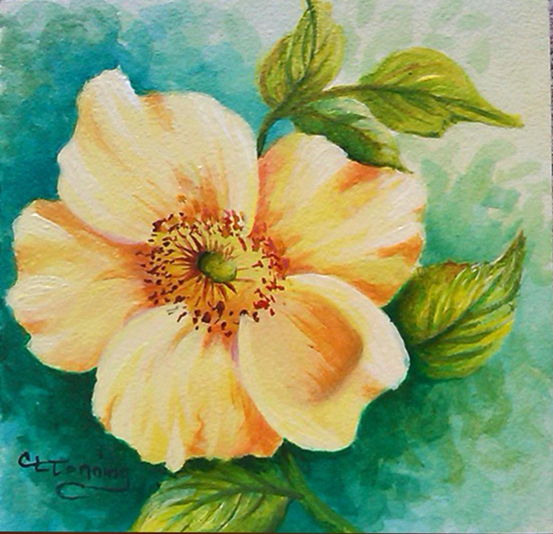 Easy Acrylic Flower Paintings Masswallpapers