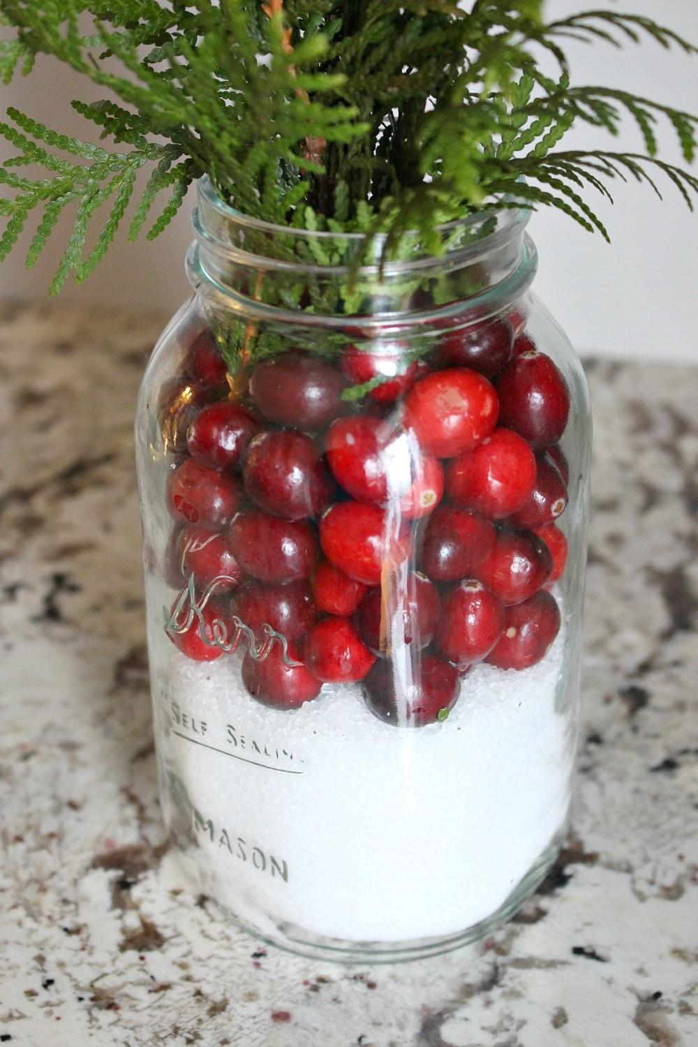Easy Cranberry Snow Centerpiece Dans Lakehouse