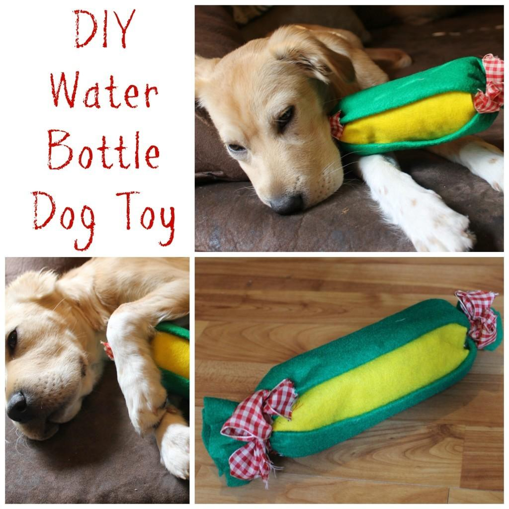 Brain Blowing Diy Dog Toys That Will Make Big Impact In Your Home Fantastic Pictures Decoratorist