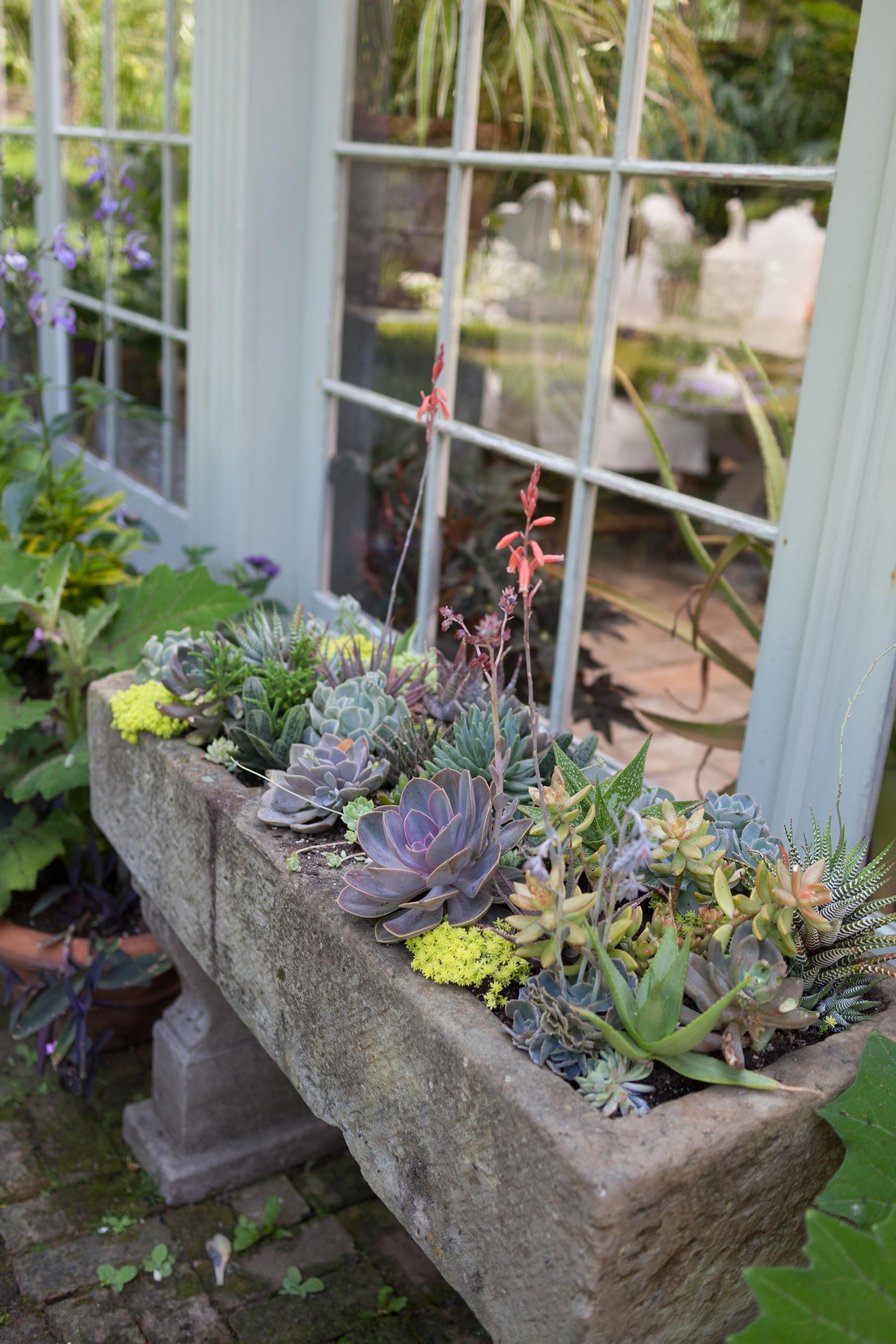 Easy Diy Gardening Projects Don Have Garden