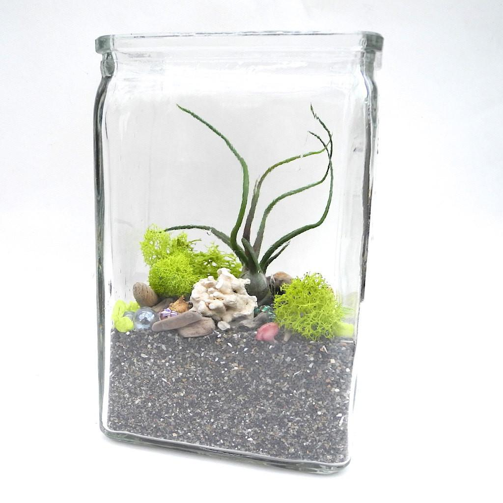 Easy Diy Miniature Garden Terrarium Kit Sea Theme