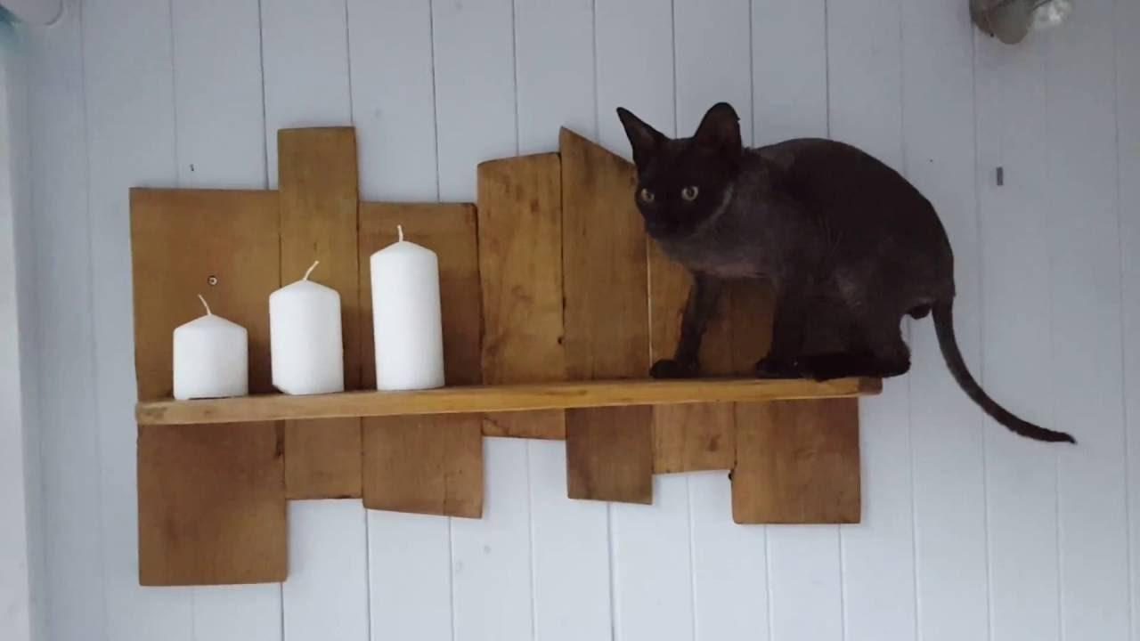 Easy Diy Pallet Projects Shelf Your Offcuts