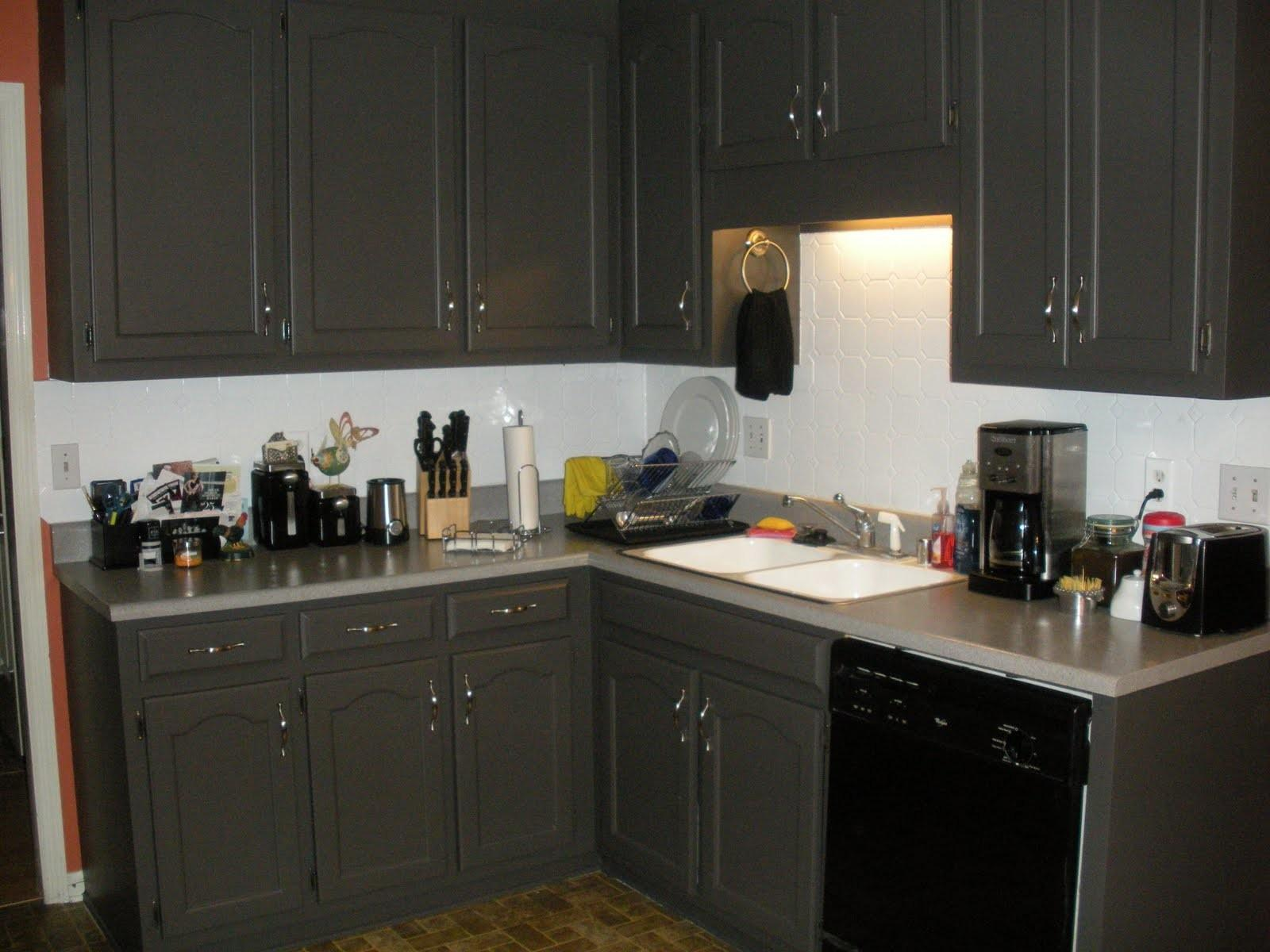 Eclectic Owl Kitchen Makeover
