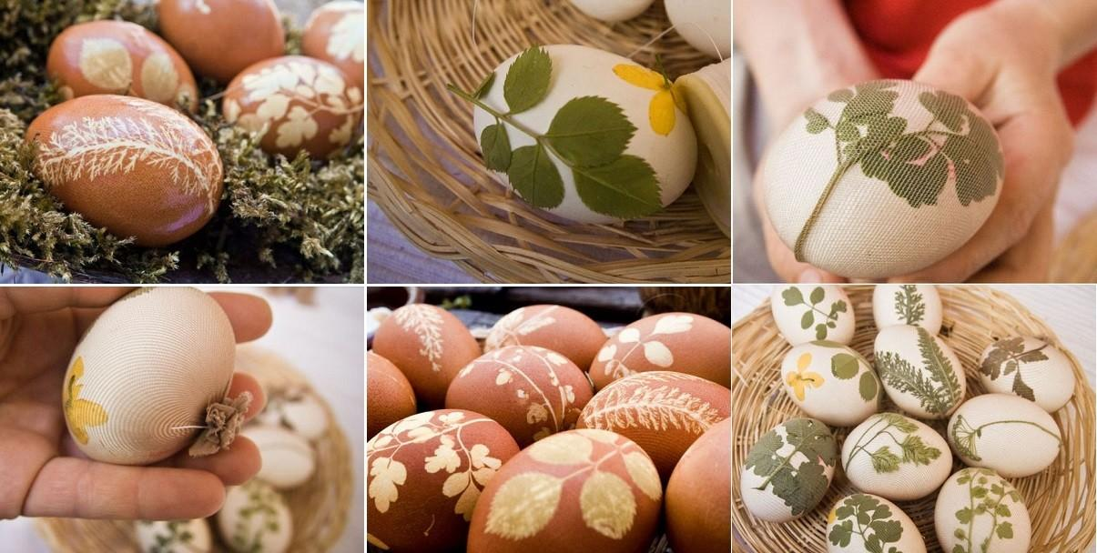 Eco Paint Easter Eggs Diy Icreatived
